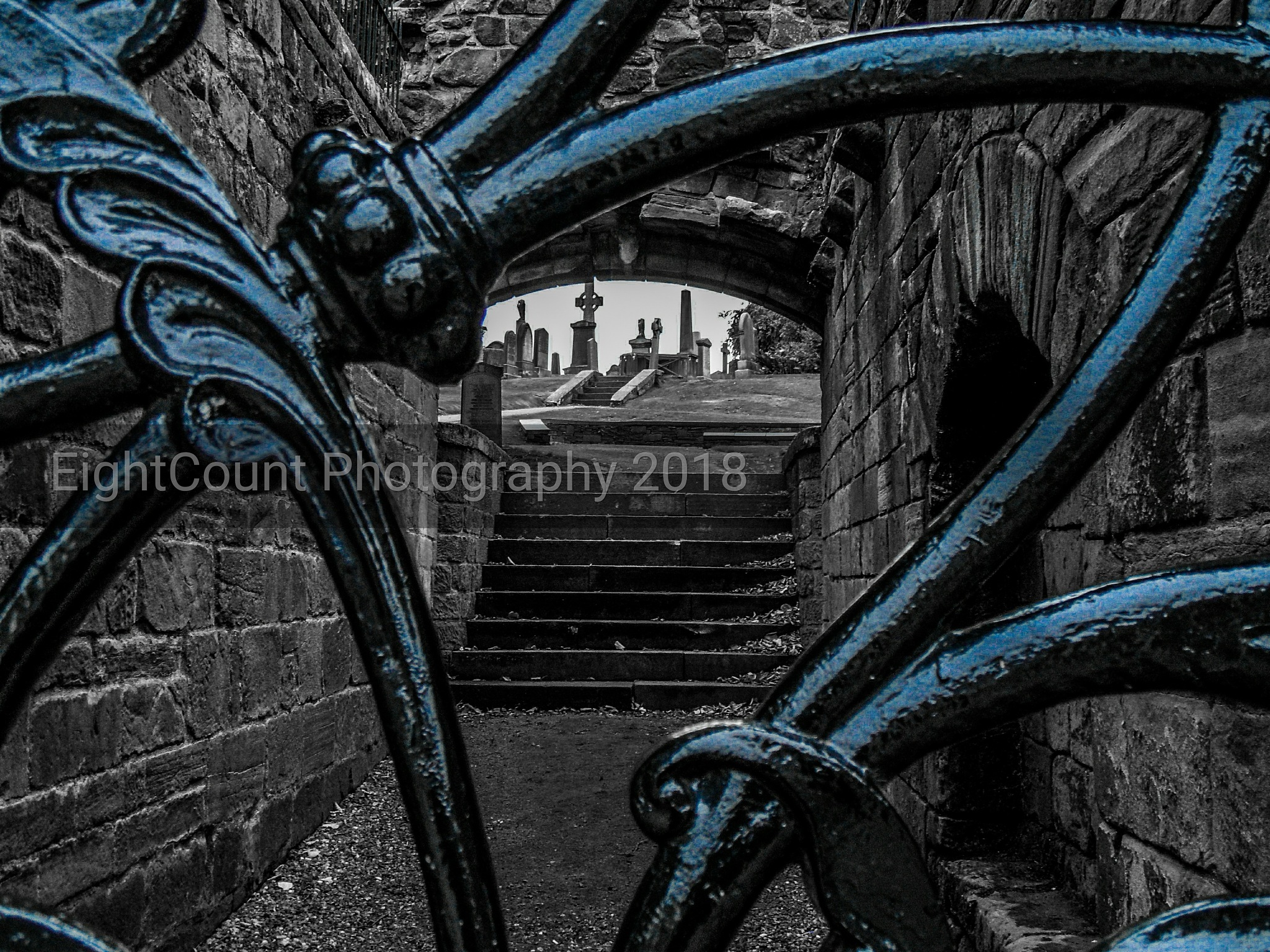 Beyond the Gate by EightCount Photography