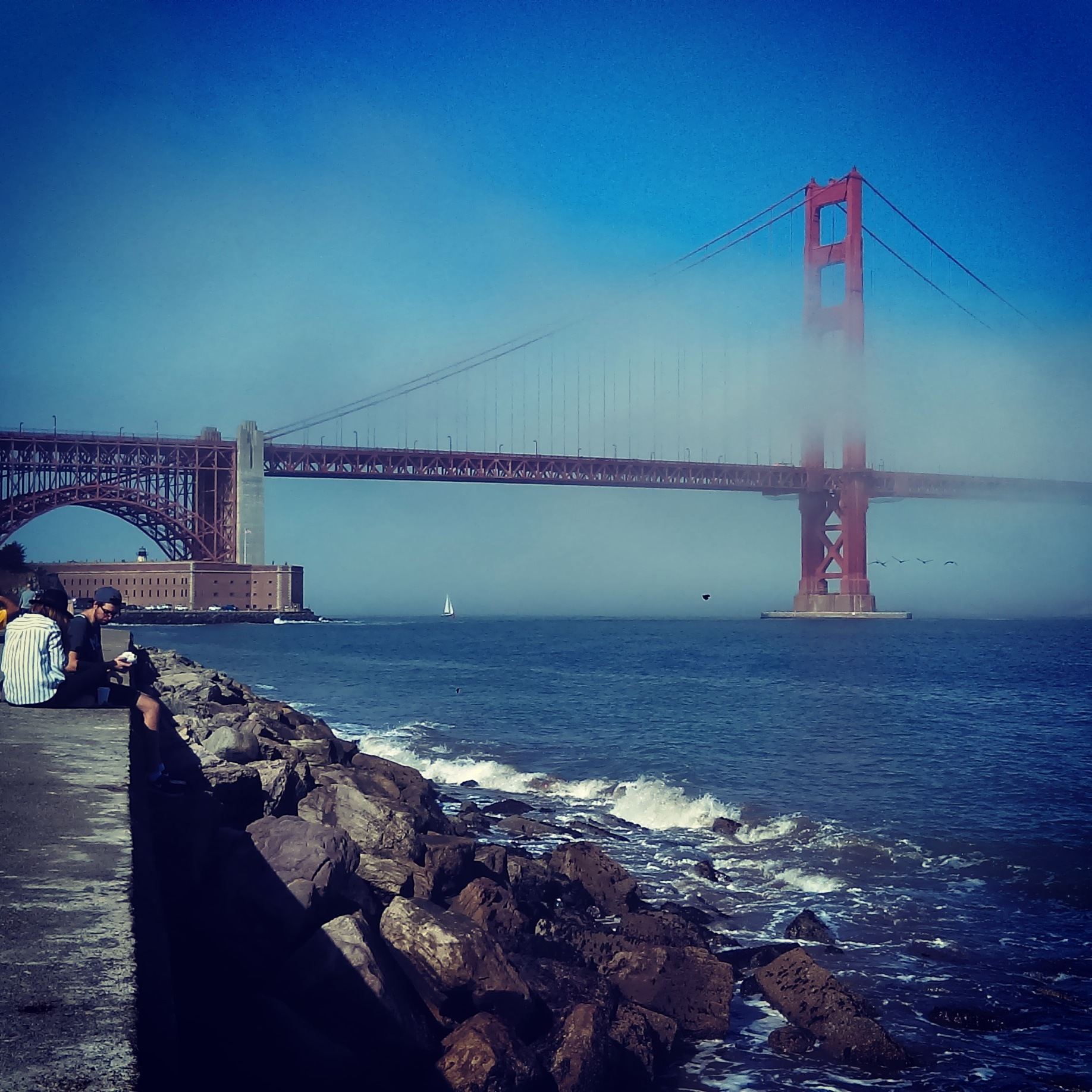 Crissy Field, San Francisco  by Moses R.