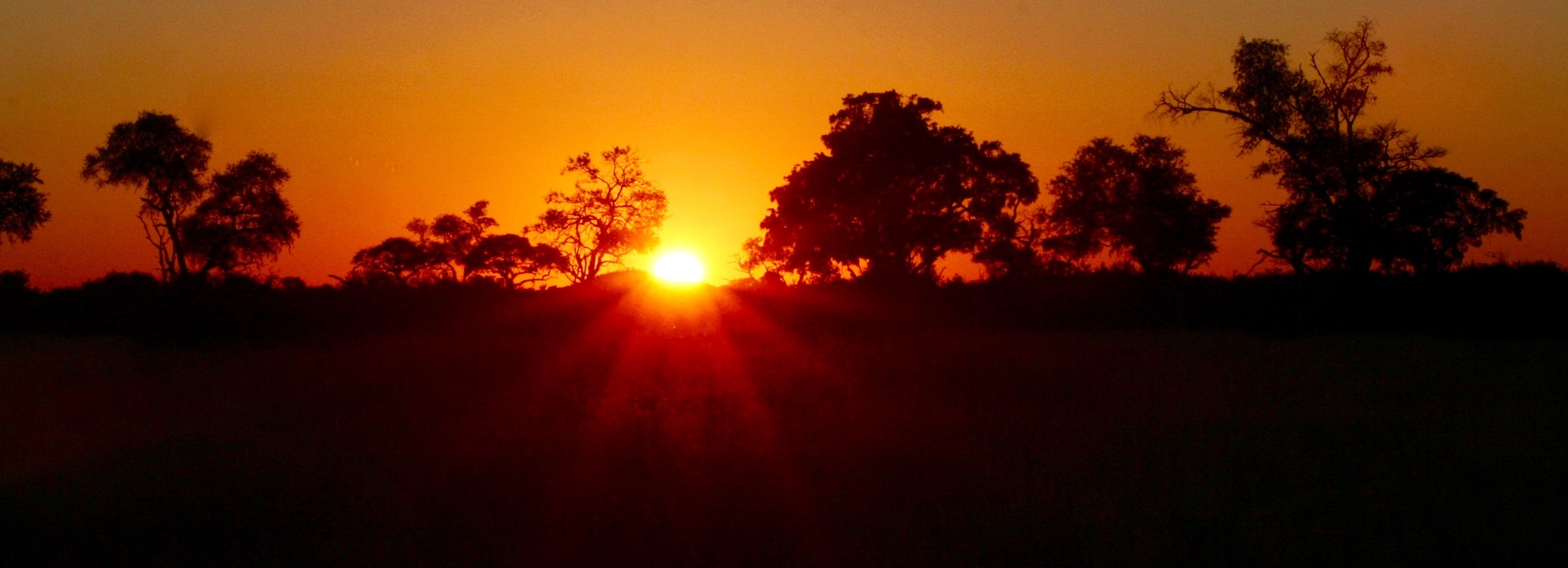 Sunrise on the African savannah by Kate Paris