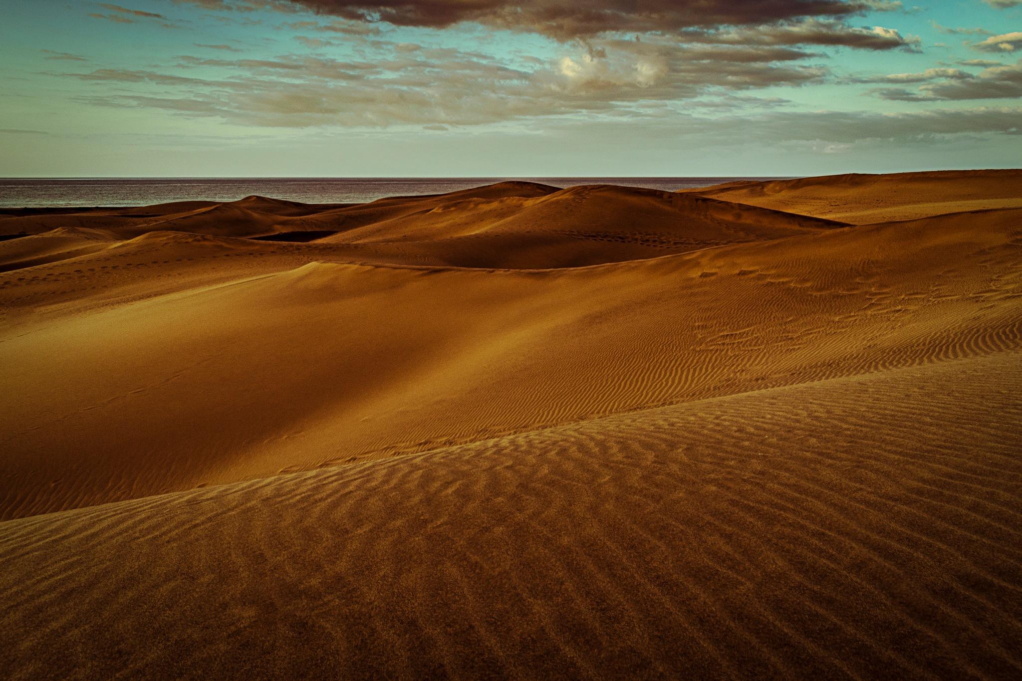 sand by Daniel Pavel