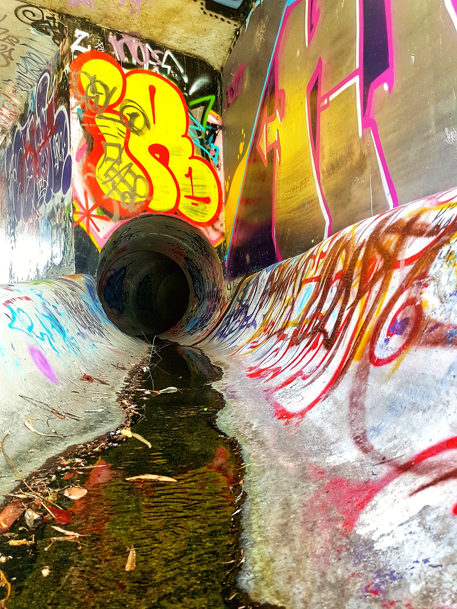 Tunnel Vision by Tom