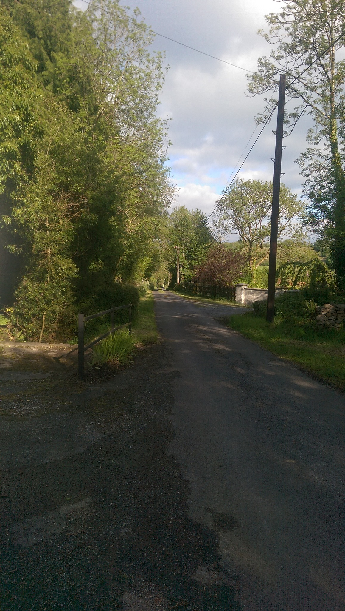 the lanes of leitrim by noreen boland