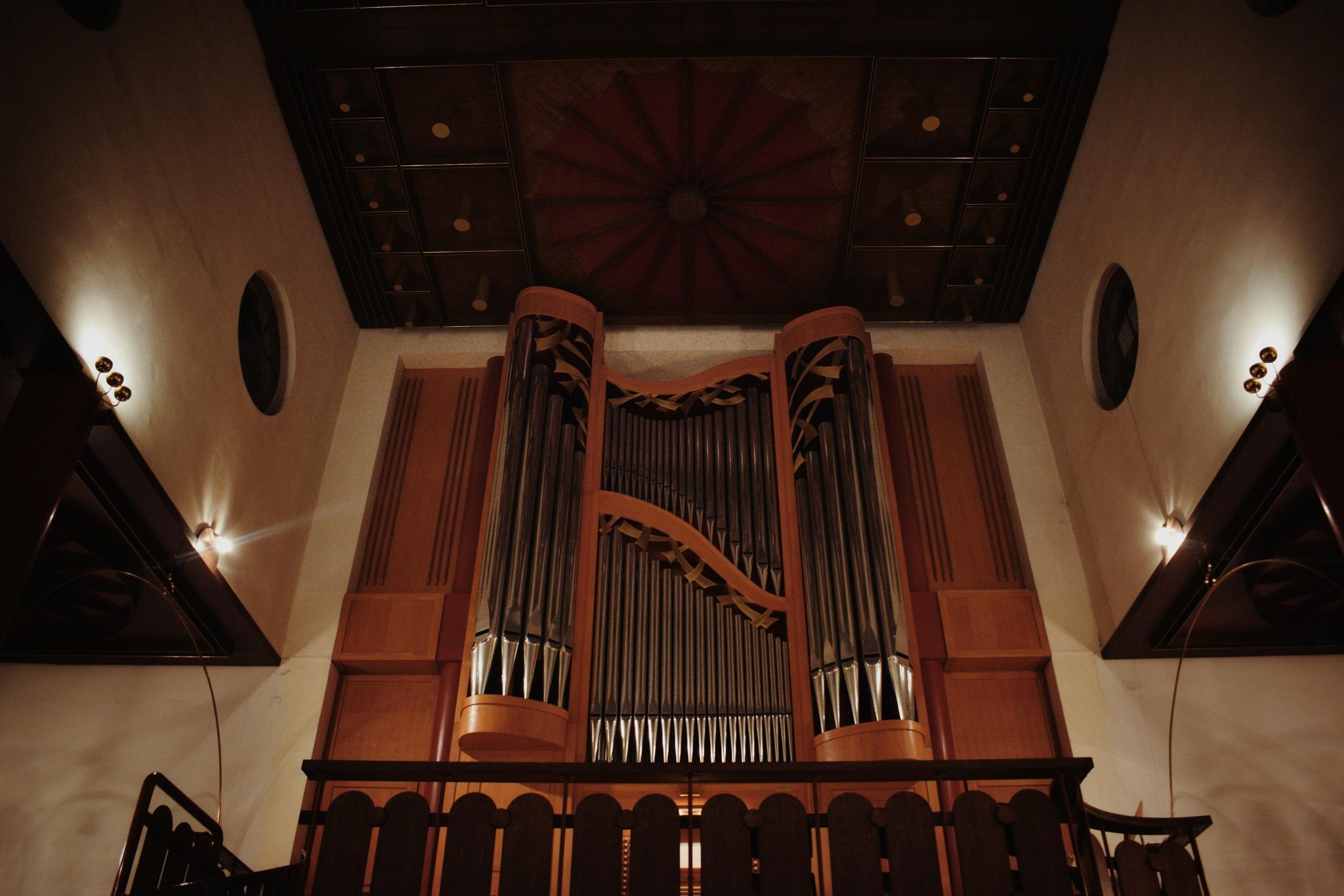 Organ by Antonina Atanaskovic