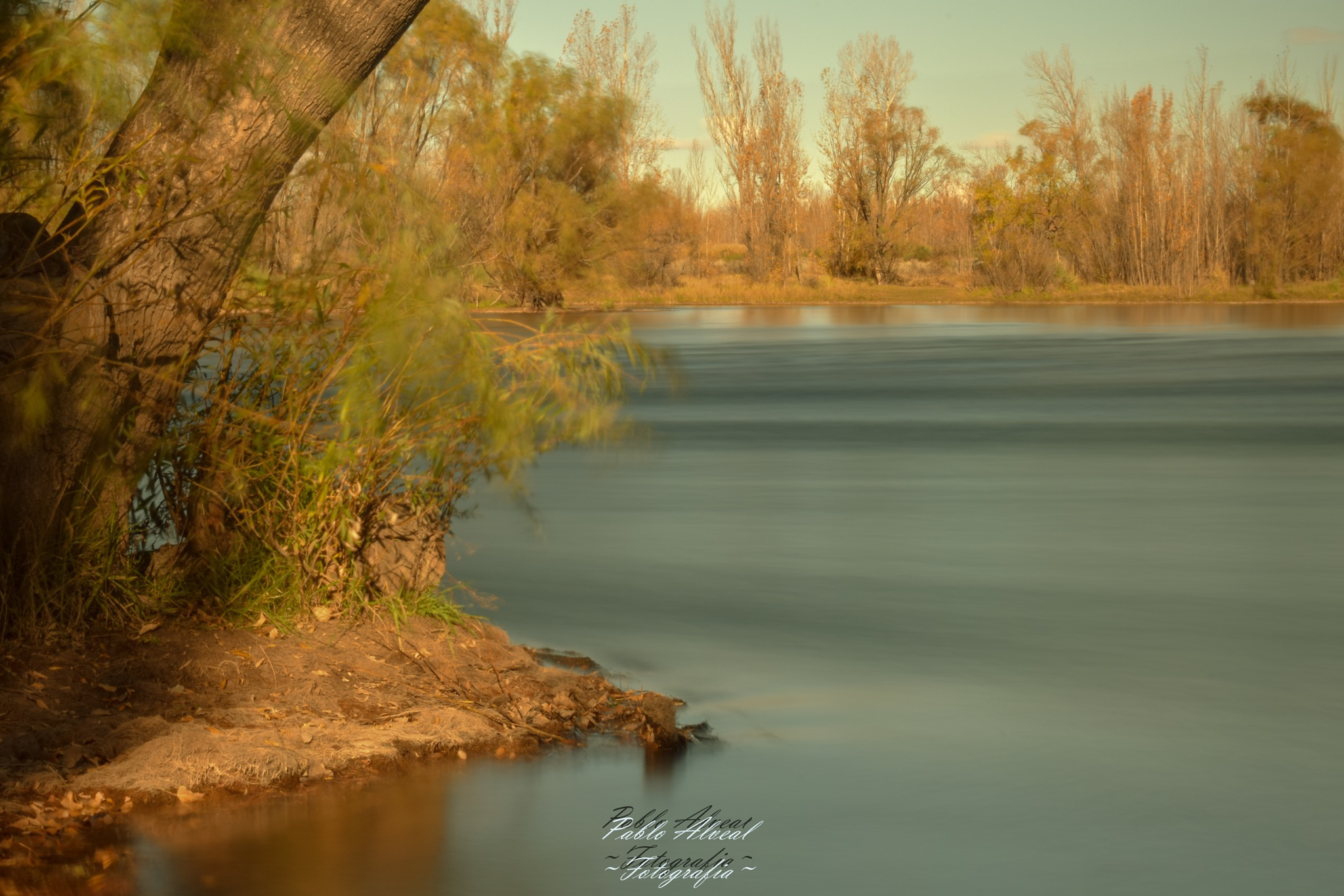 Rio Limay by Pablo Abner Isaac Alveal