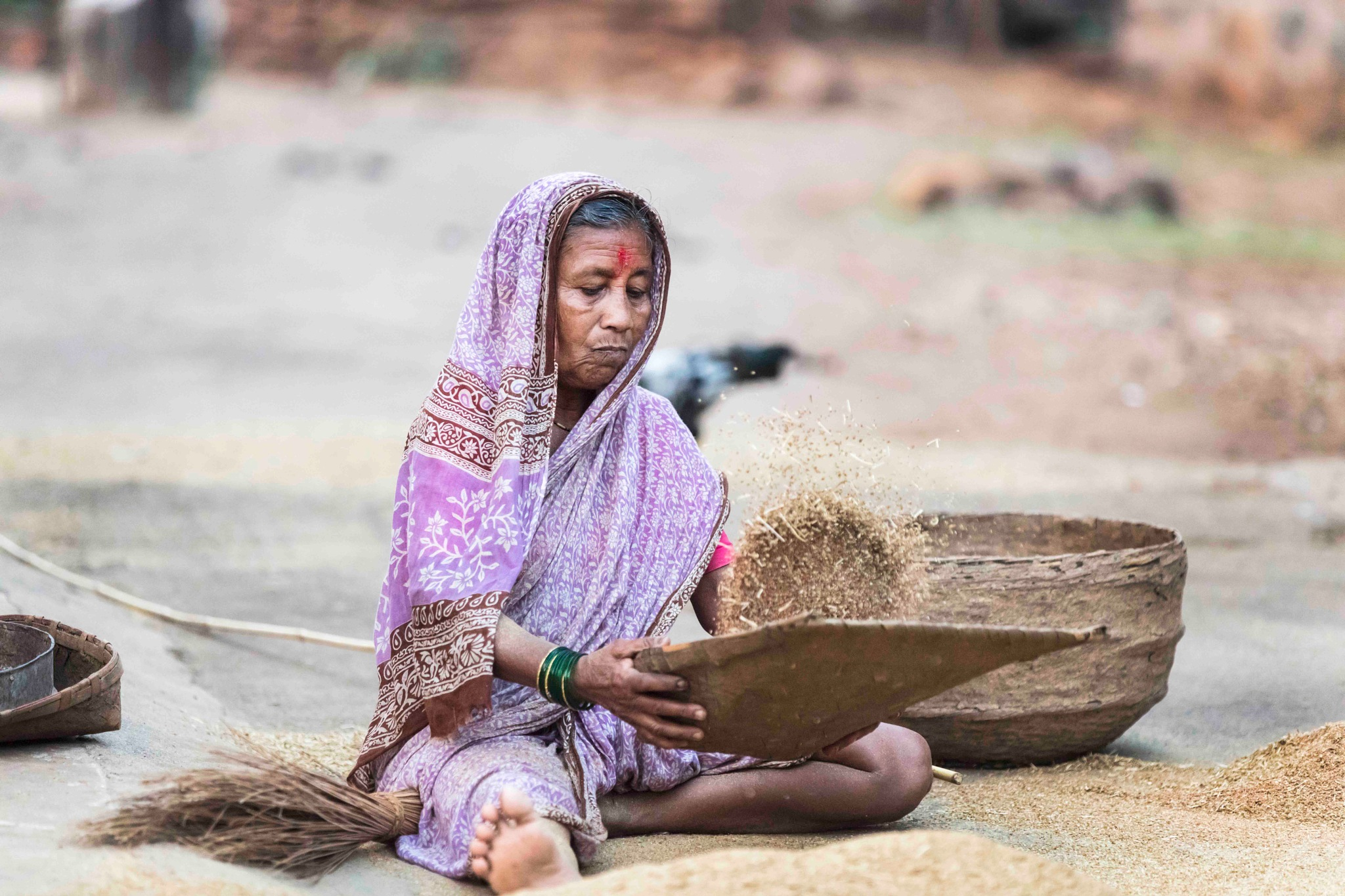 Wheat From The Chaff by Vikas Datta