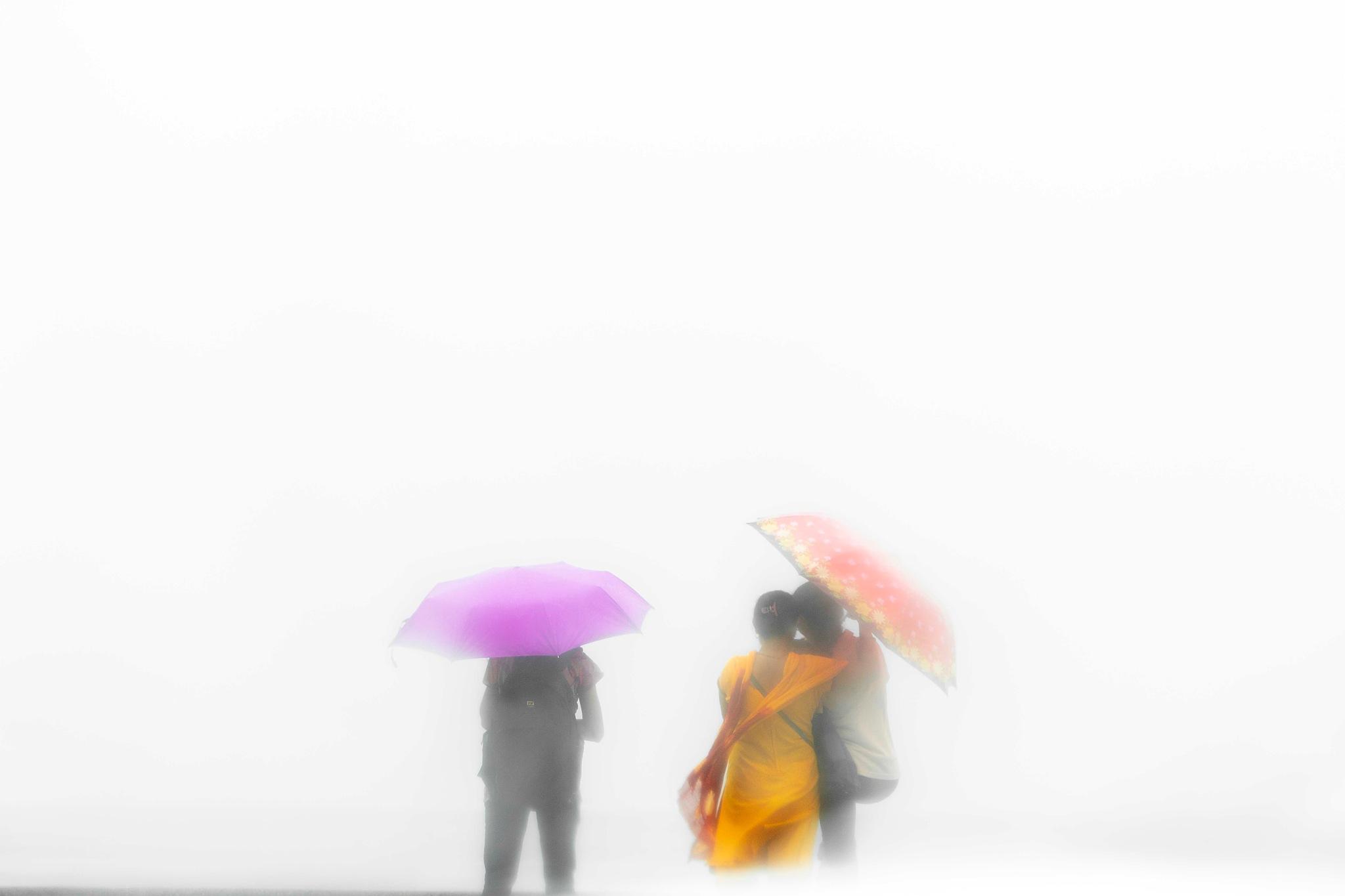 Whiteout by Vikas Datta