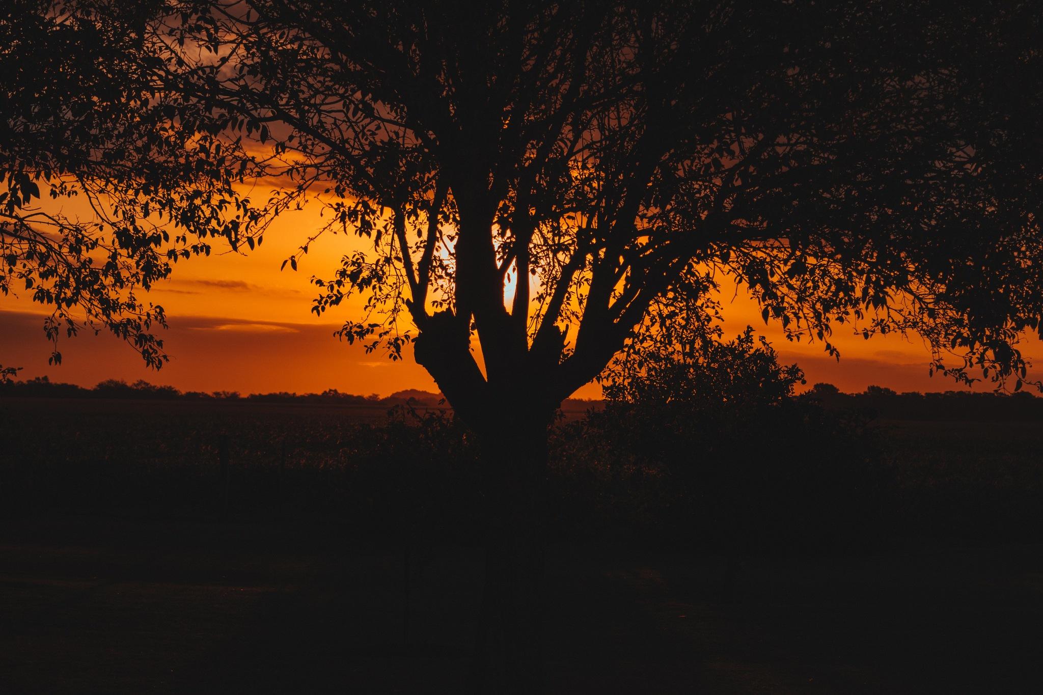 Sunset by Juan Bernardo Garmendia