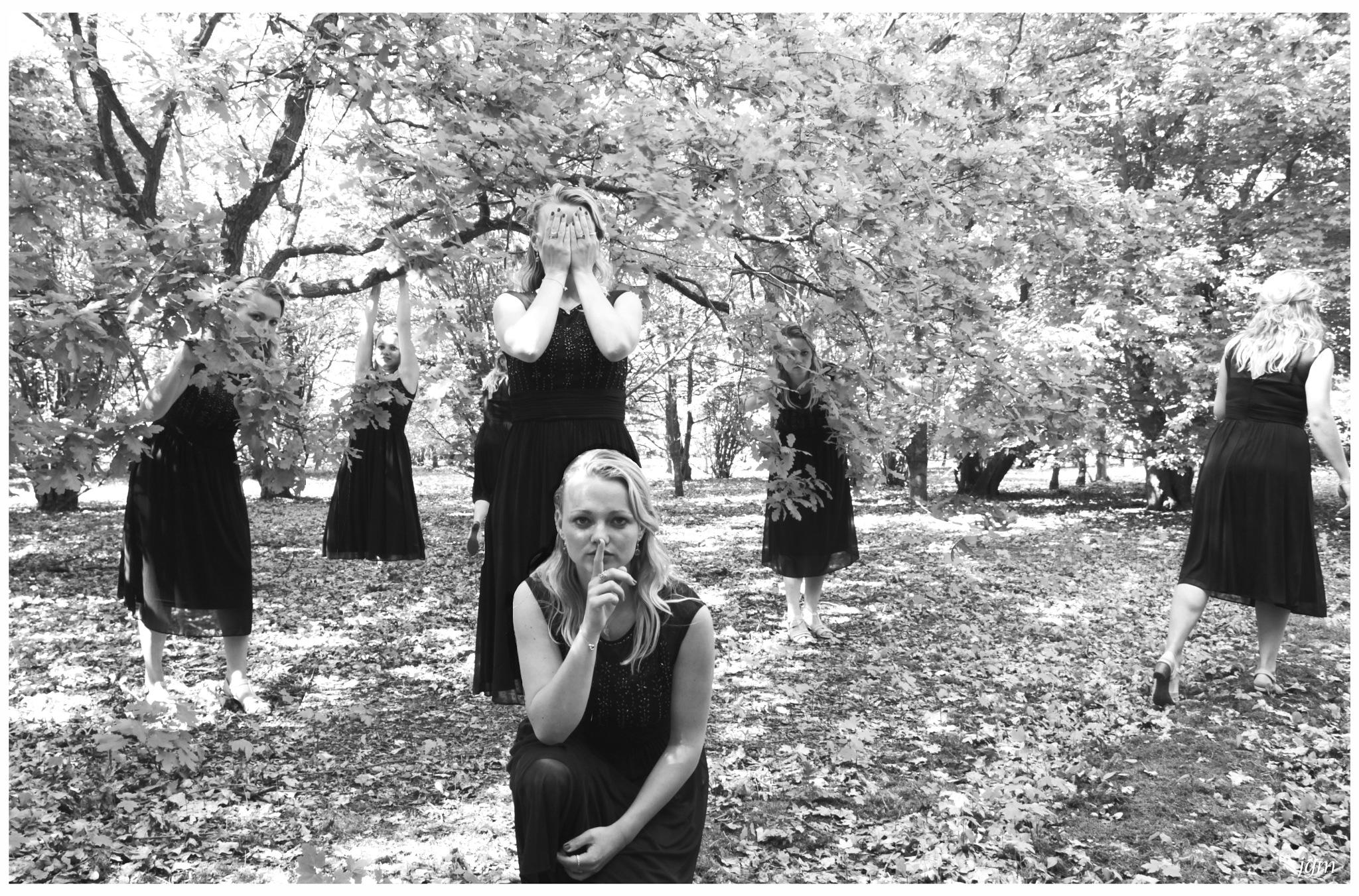 Sisters in the wood by Jan Machielsen