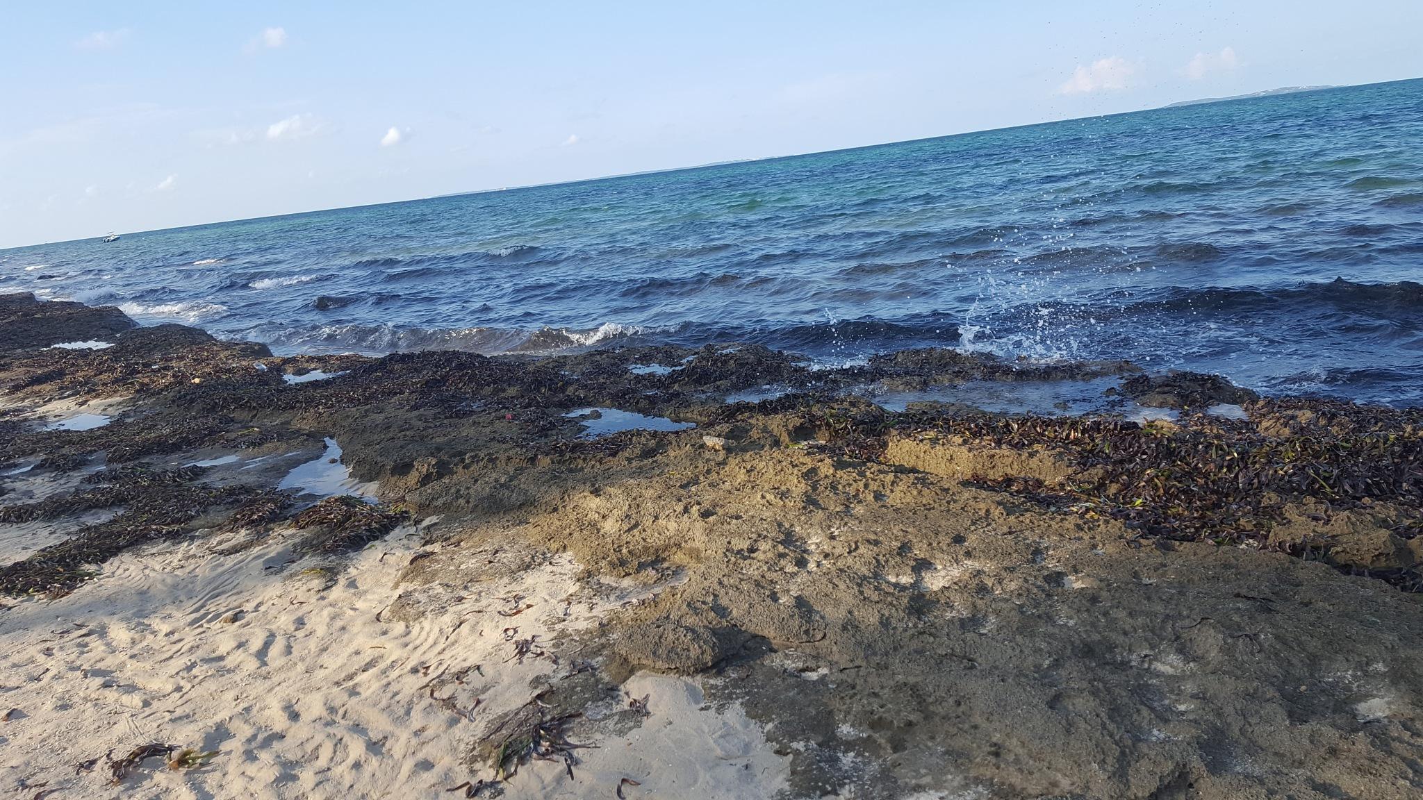 Beach day by rshelsio