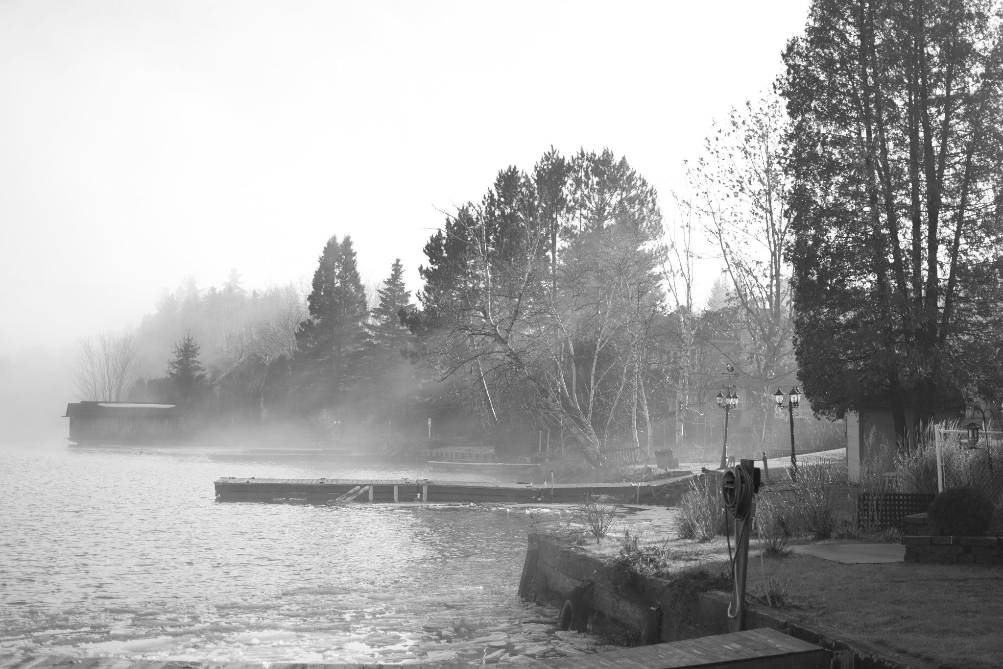 Fog by miid0u