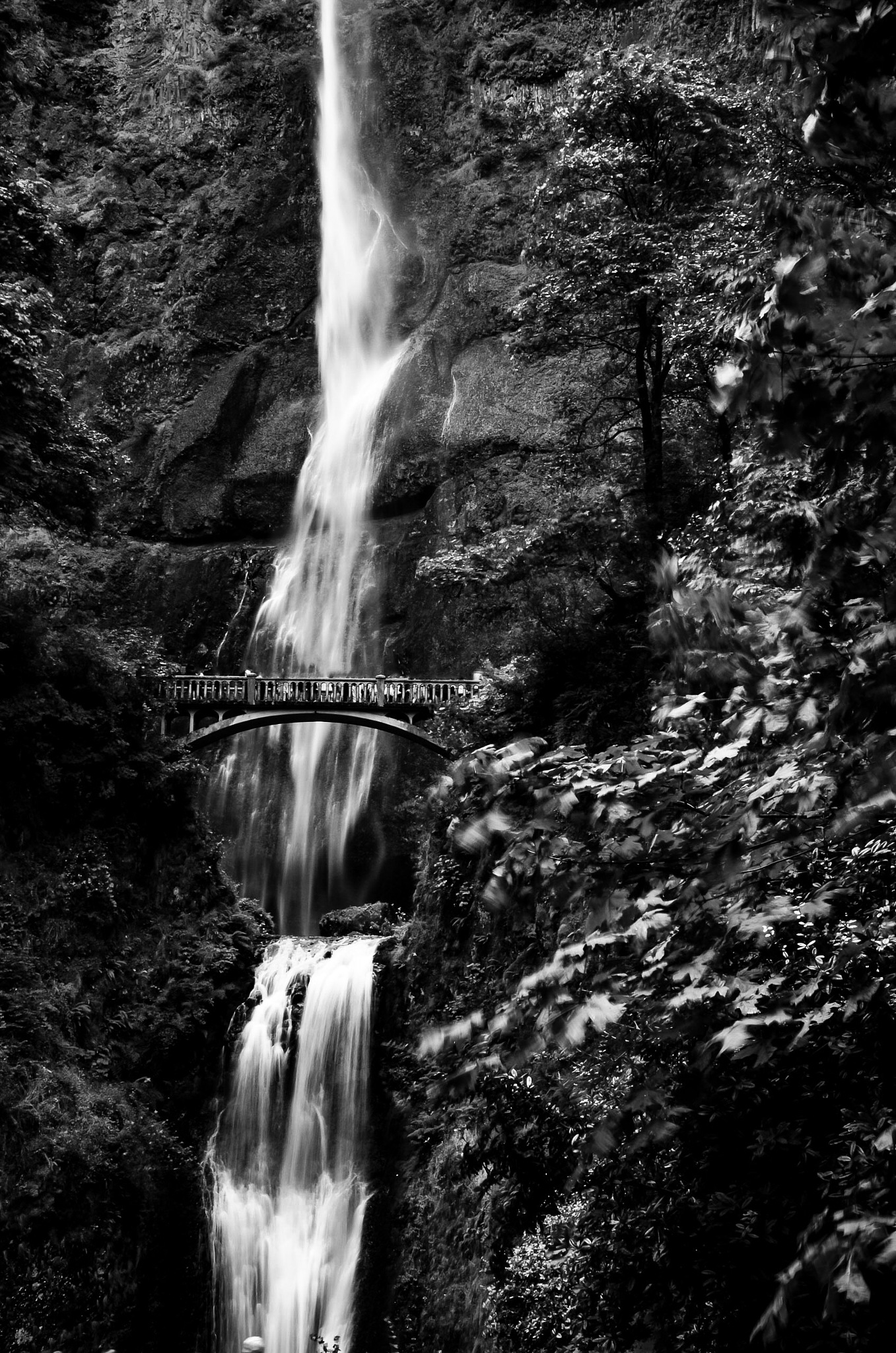 Multnomah falls by Dan Riddle's Fine Art Photography