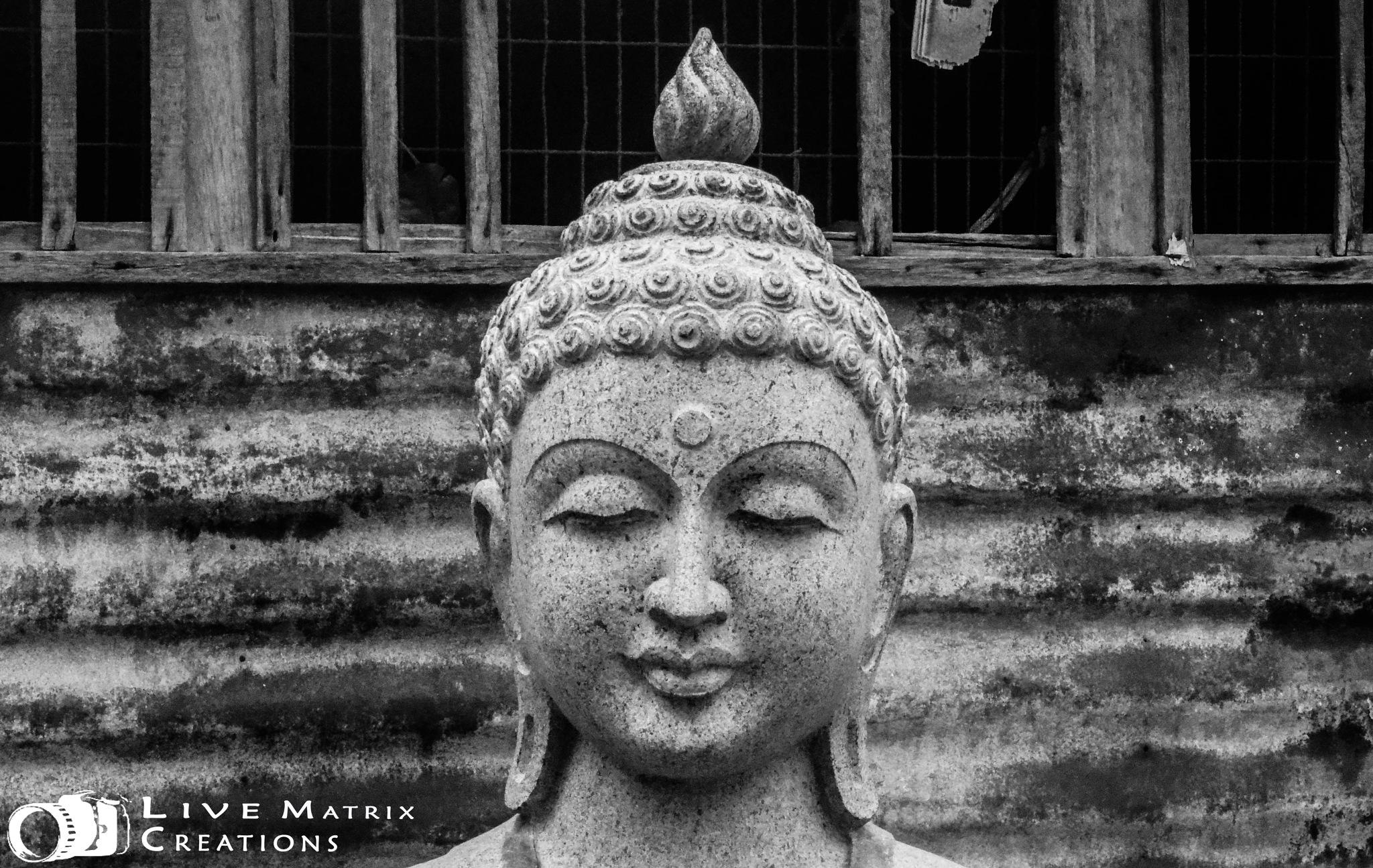 Gautama Buddha by Live-Matrix