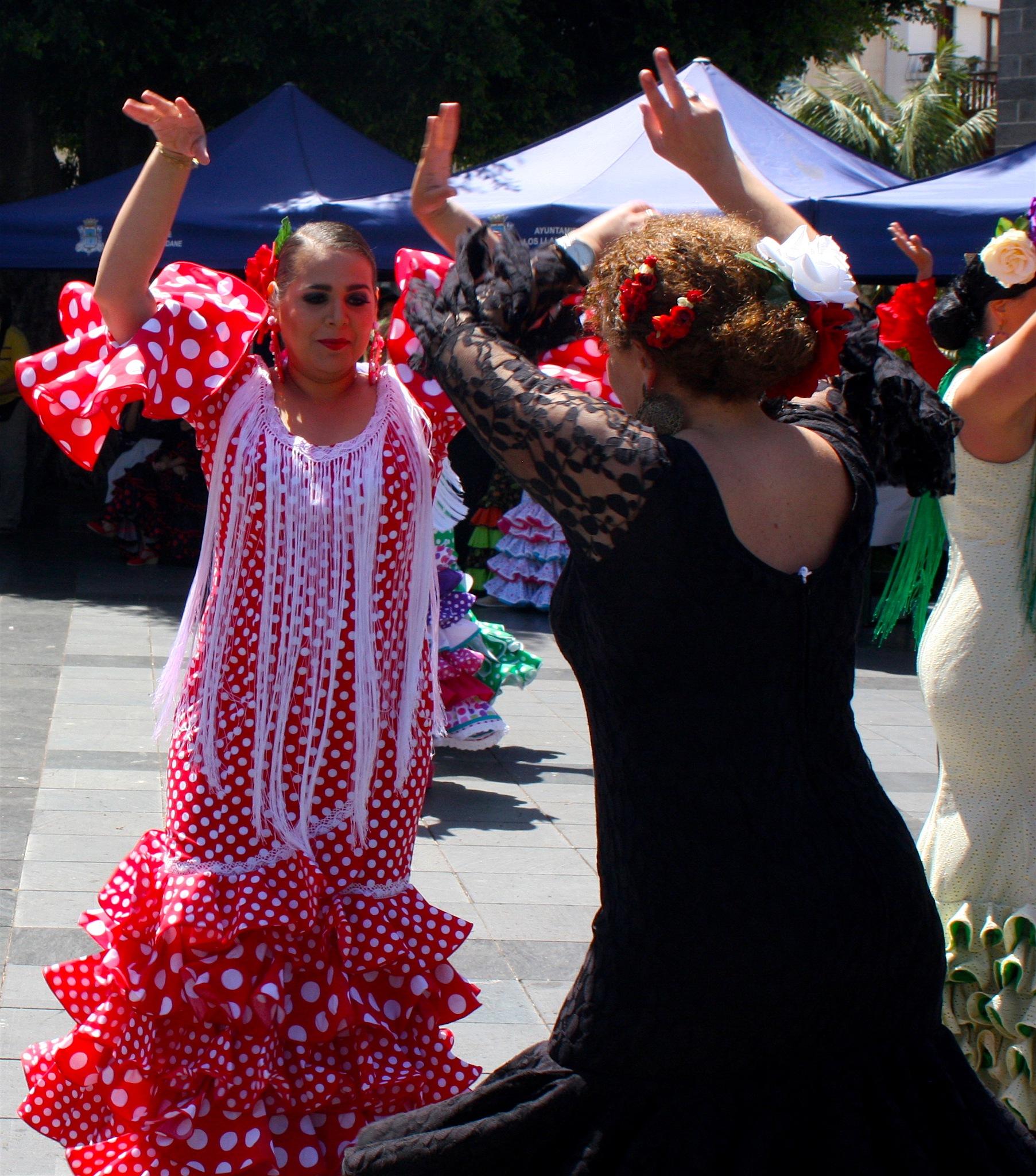 Flamenco by Ddolfelin