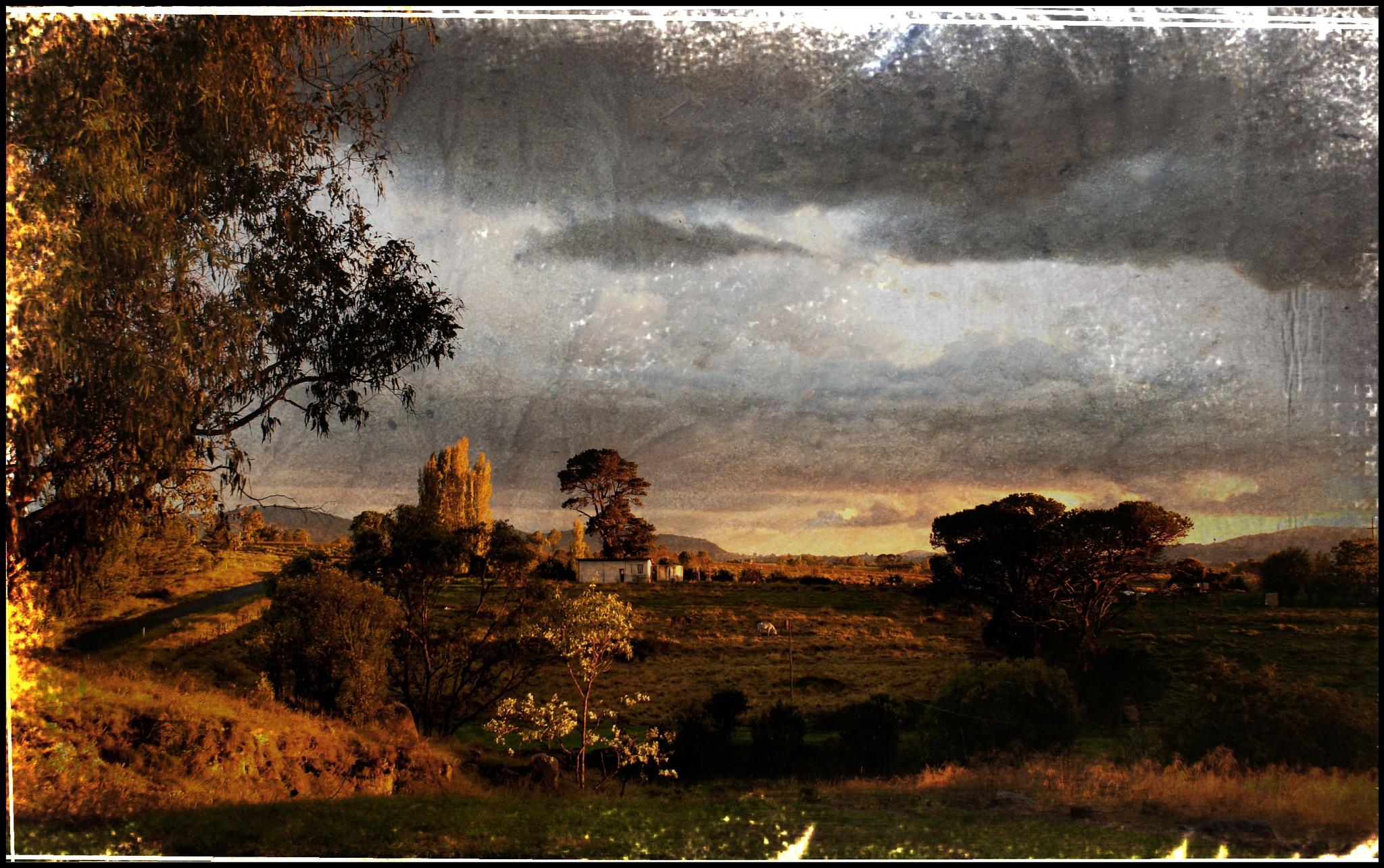 Sundown, Tenterfield, Australia by Marilyn Bielski
