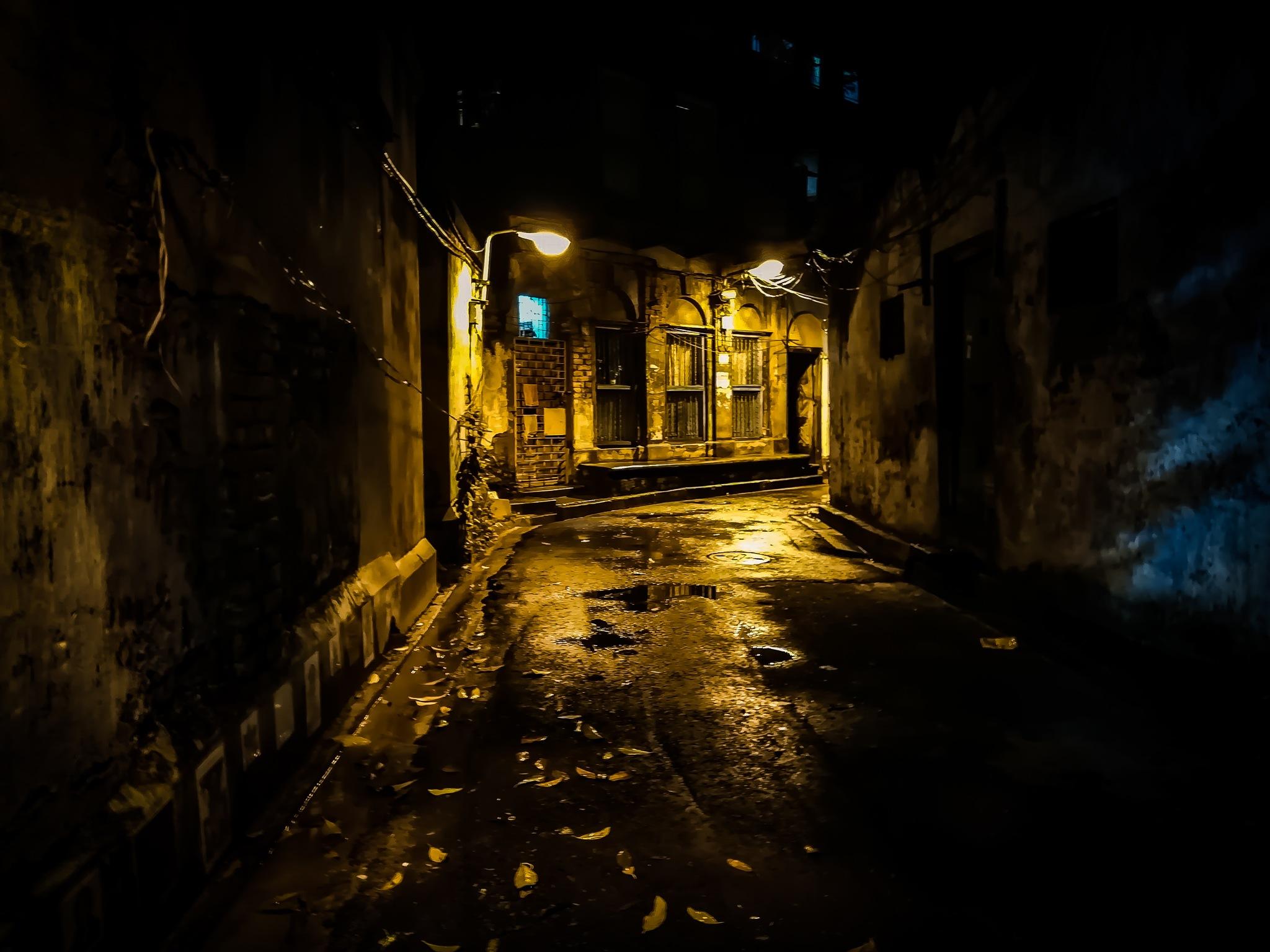 Night-Shade by Rounak Kumar