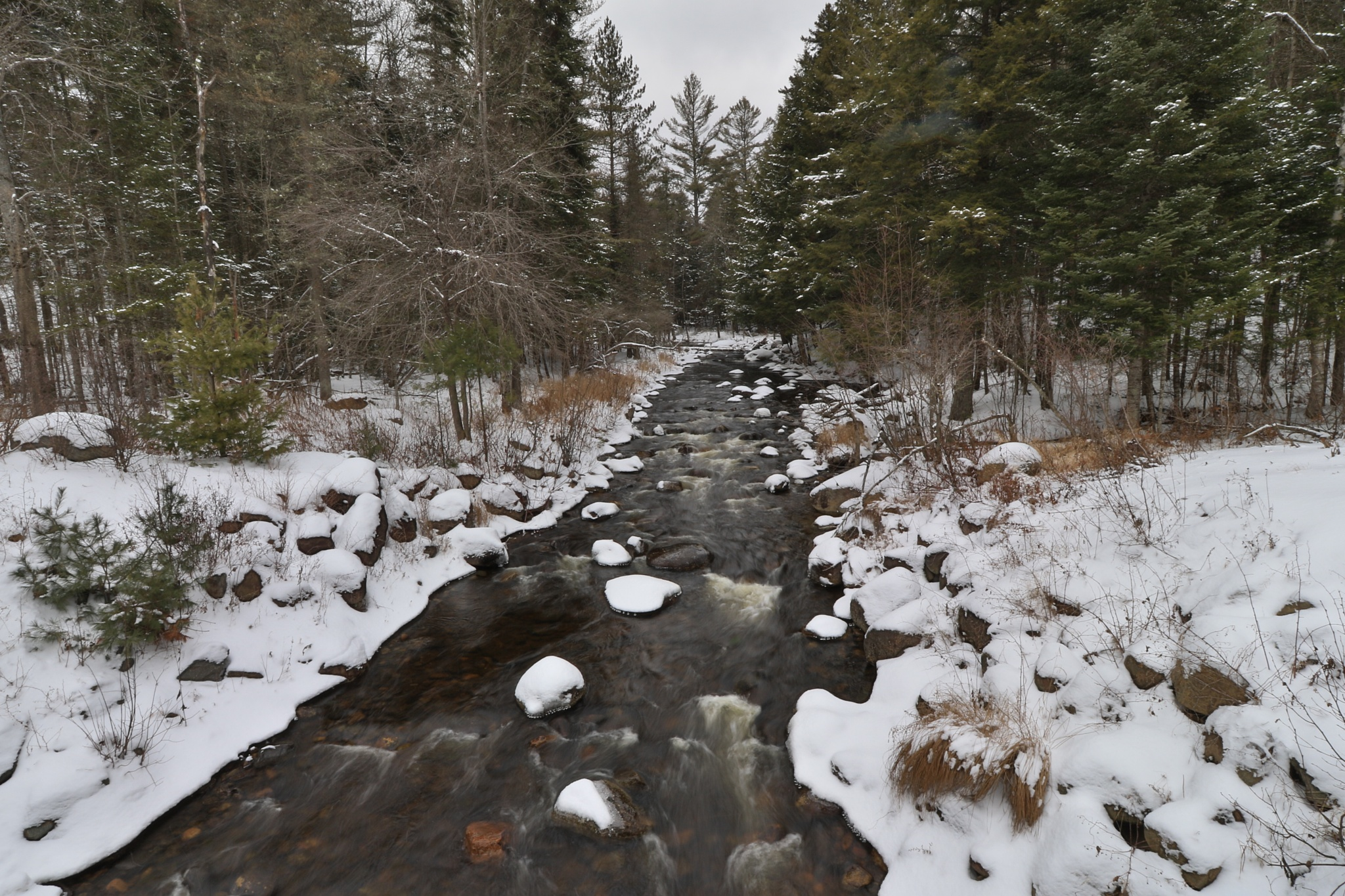Mill Creek in Winter by CT Ware