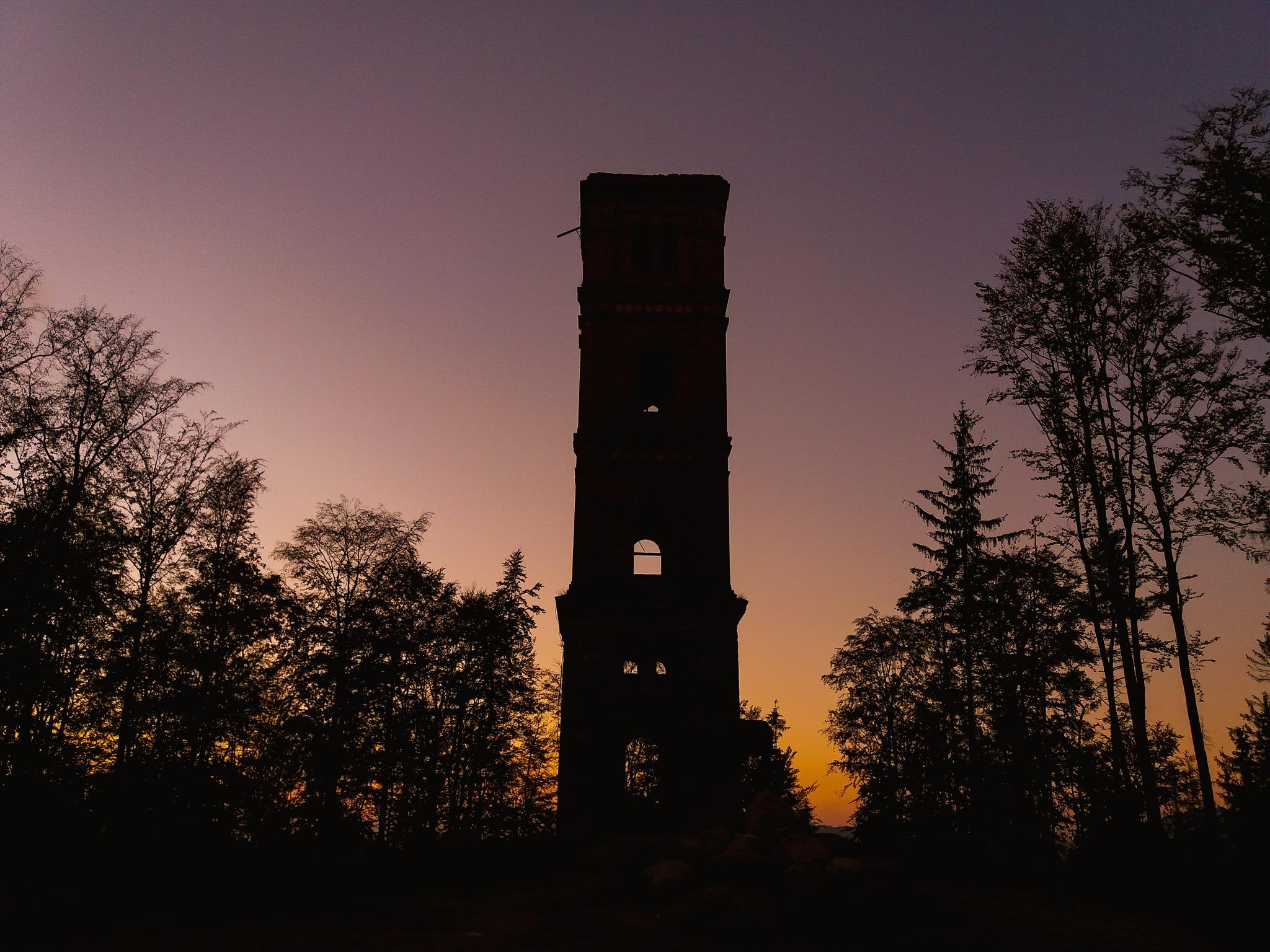 Forest Tower  by Arkadiusz Sośniak
