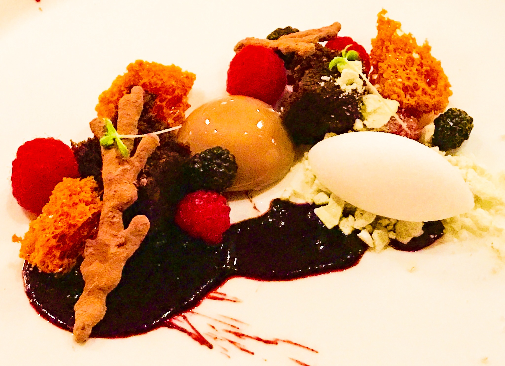 Crème au chocolat au lait Tanariva framboises, tire éponge, gâteau à la mélasse, sorbet au thé des b by Karen Bekker