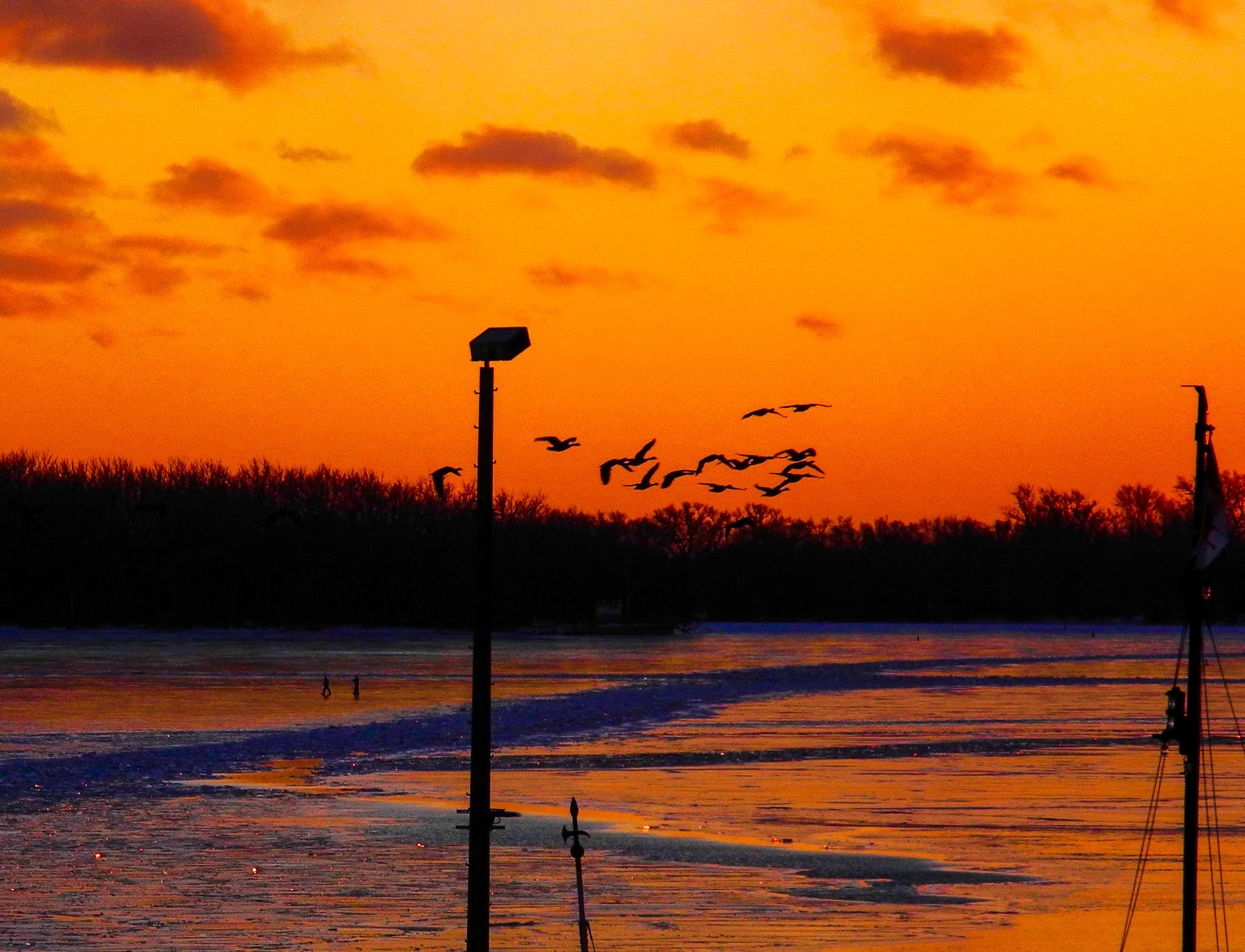 When the ice began to thaw ... Toronto Islands by Karen Bekker