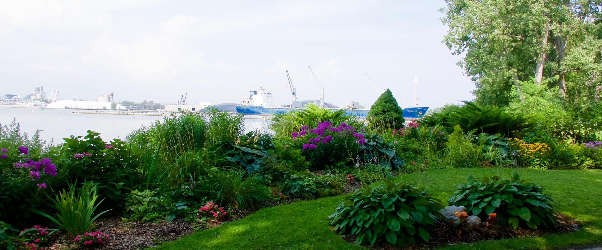 Gardens of Ward's Island by Karen Bekker