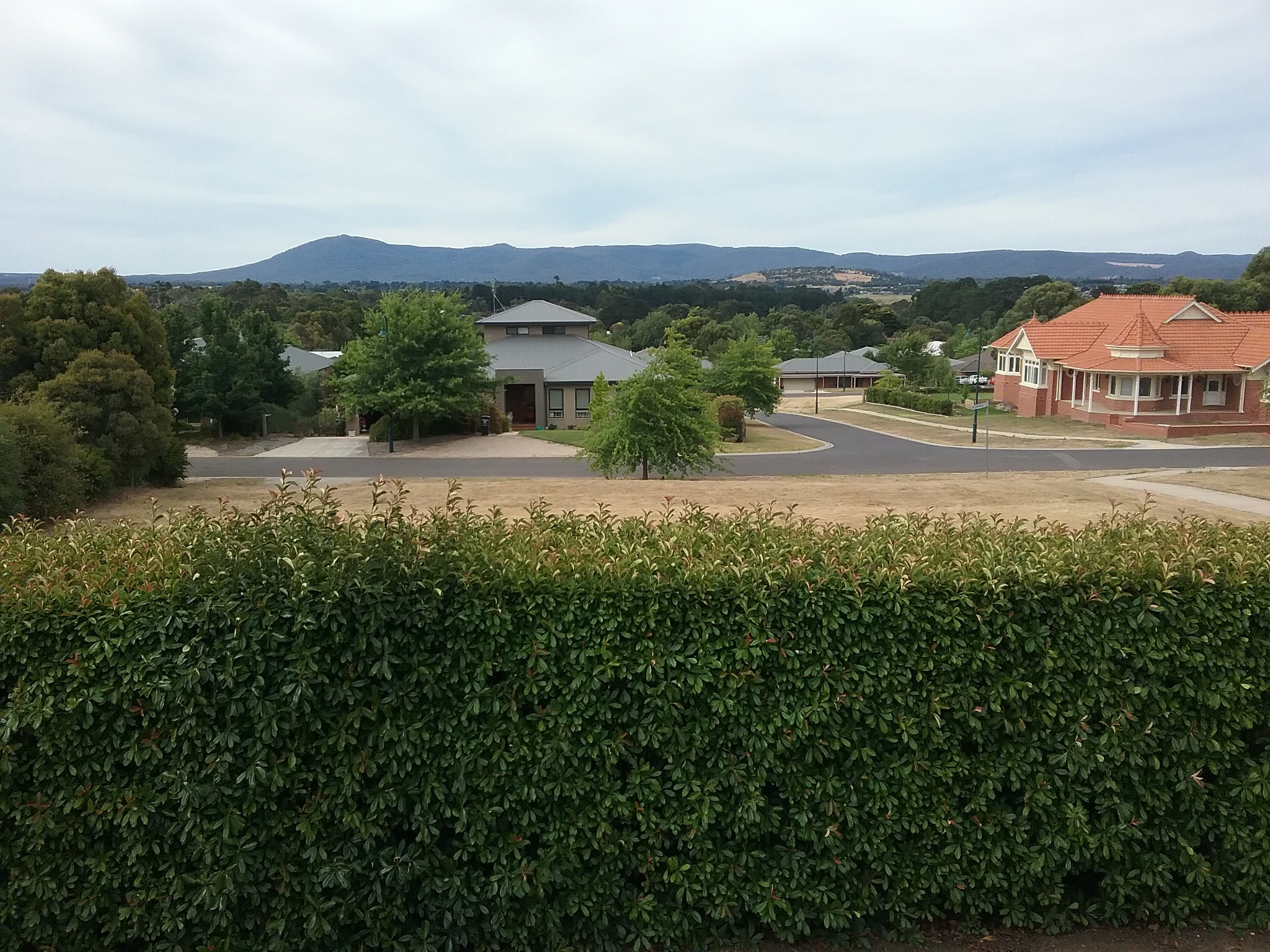 Viewing Mount Macedon by Leica Ross