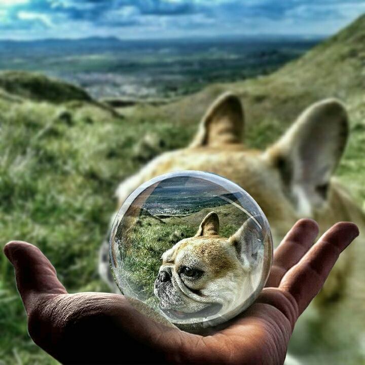Wow Amazing  by Photograptikoo