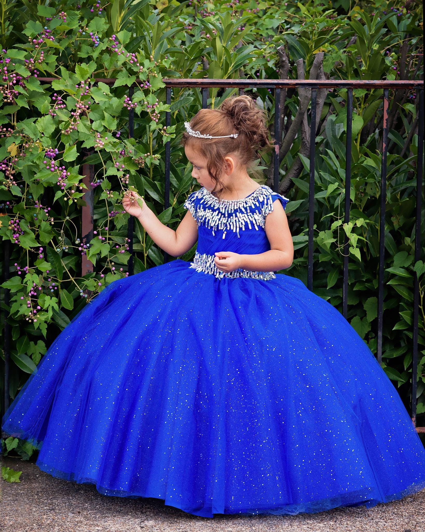 Curious Princess by Elizabeth Funes