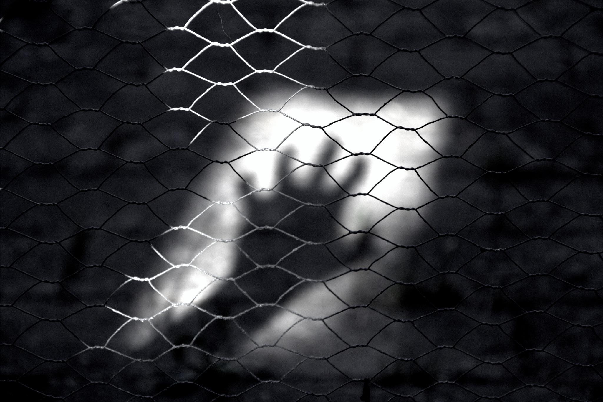 Reaching for the light by Maya Hammarkvist