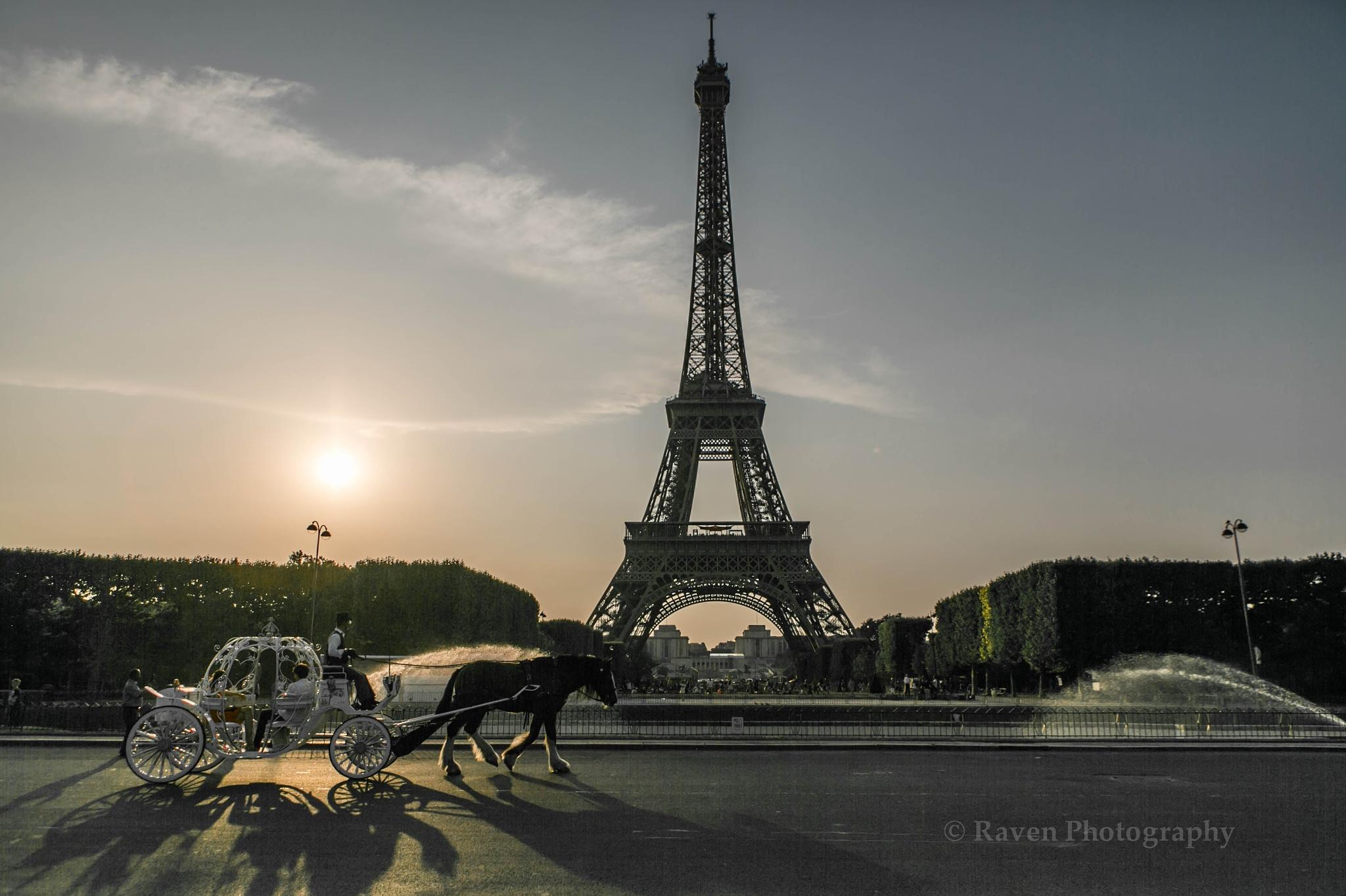 Shadows of Paris by eltonraven