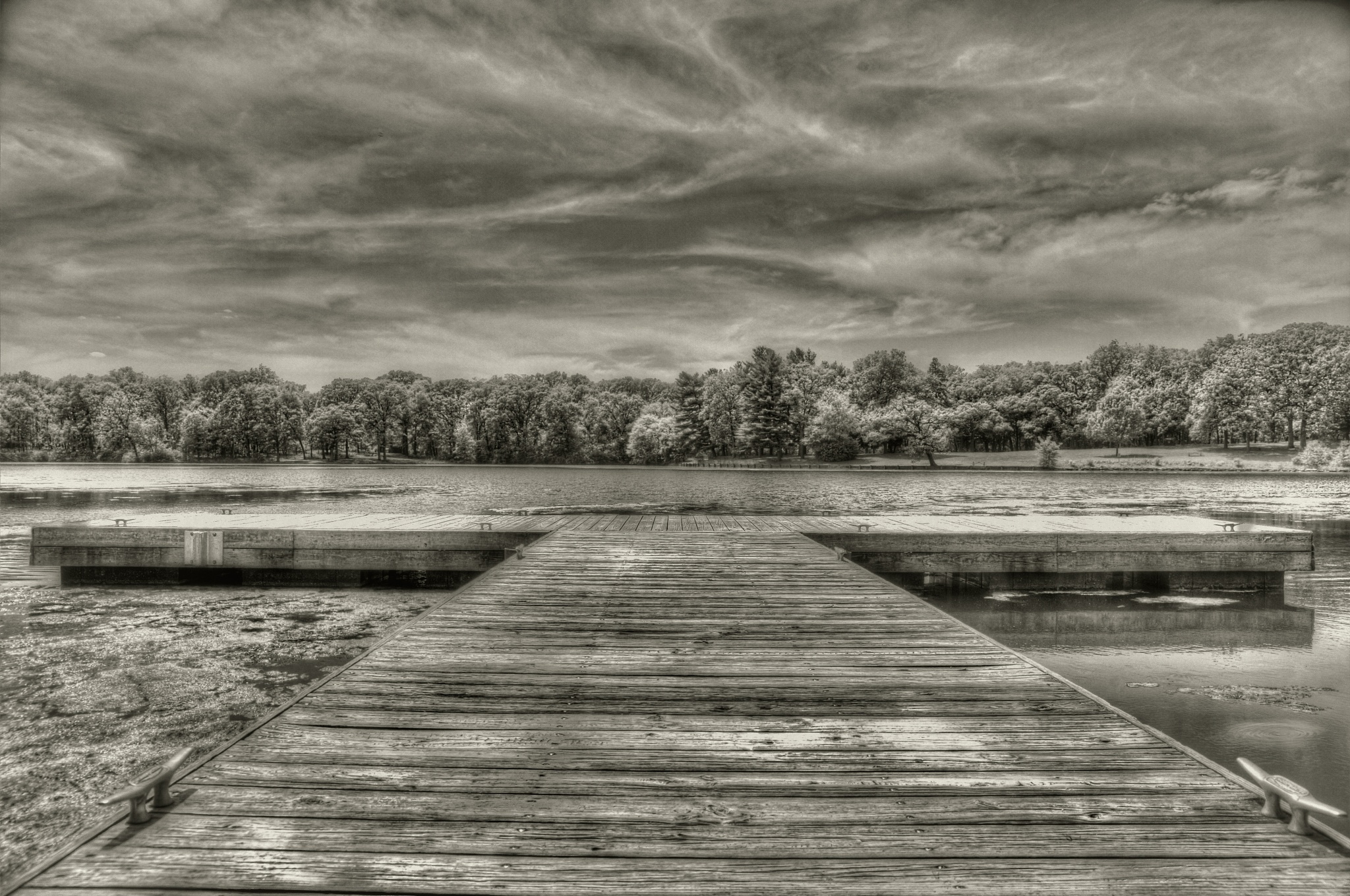 Dock of the bay by David Neesley