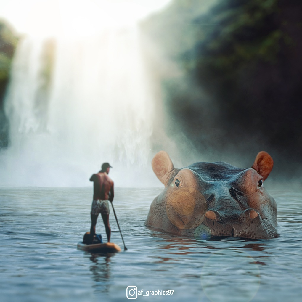 BIG HIPPO!! by afgarphics97