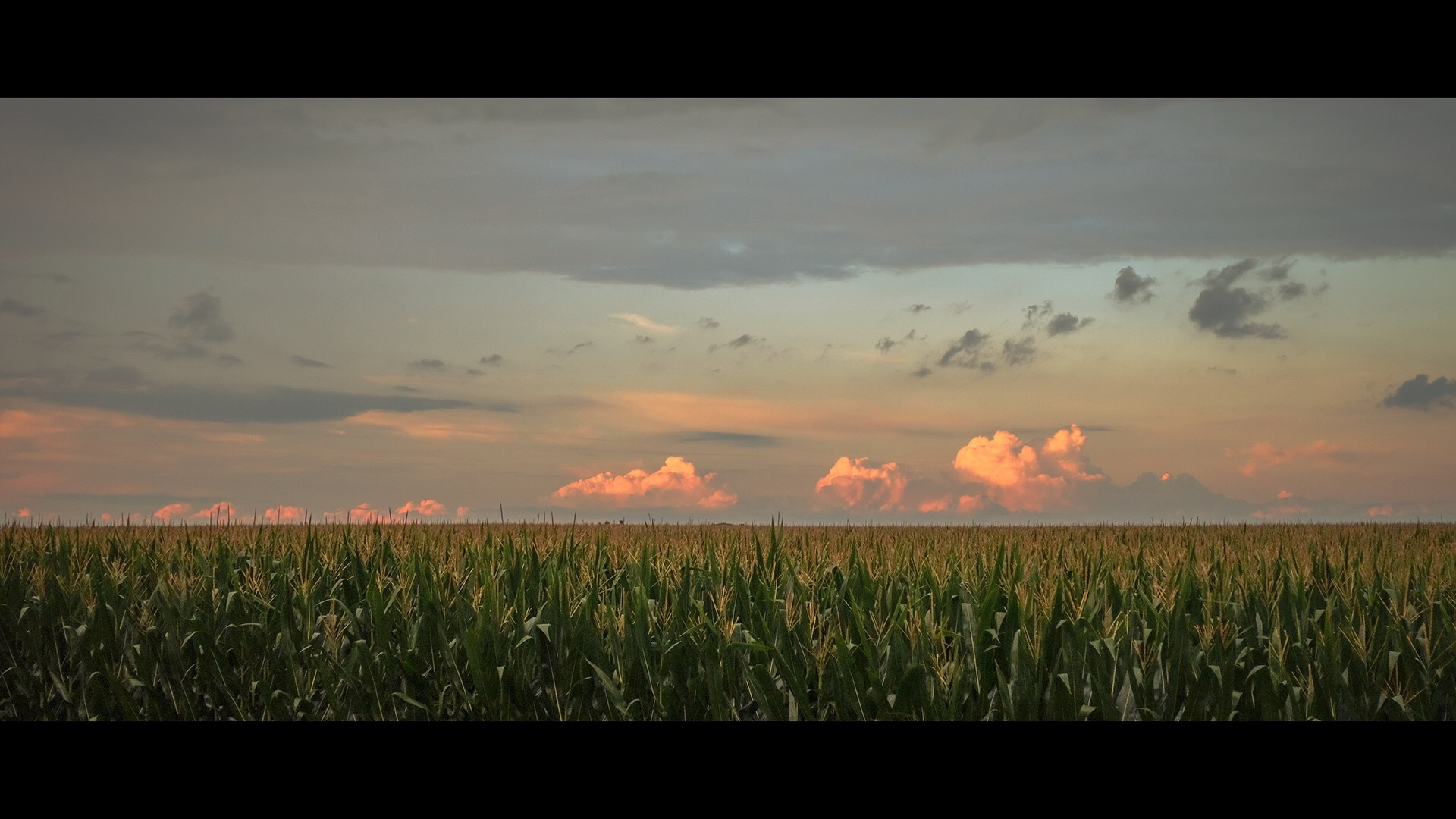 Midwest Sunset by Kevin E. Nelson
