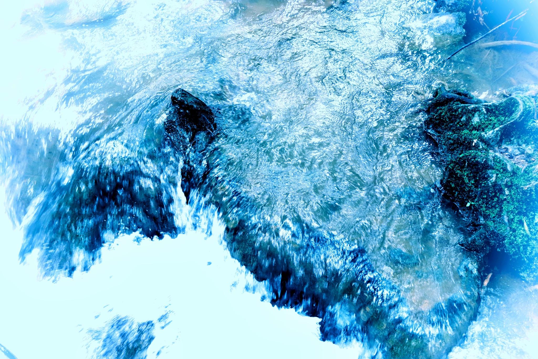 Water by Aayush Vispute