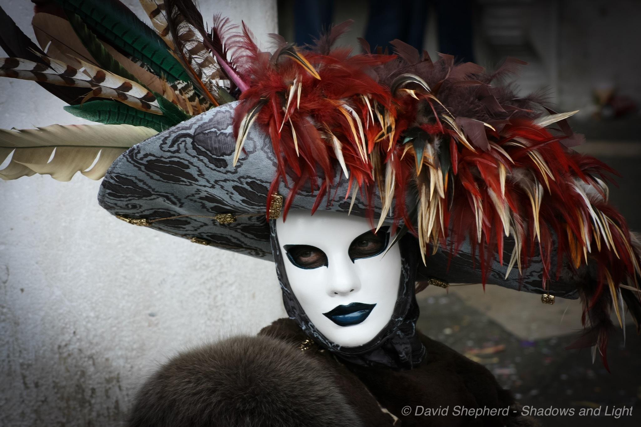 Carnavale de Venezia by David Shepherd - Shadows and Light