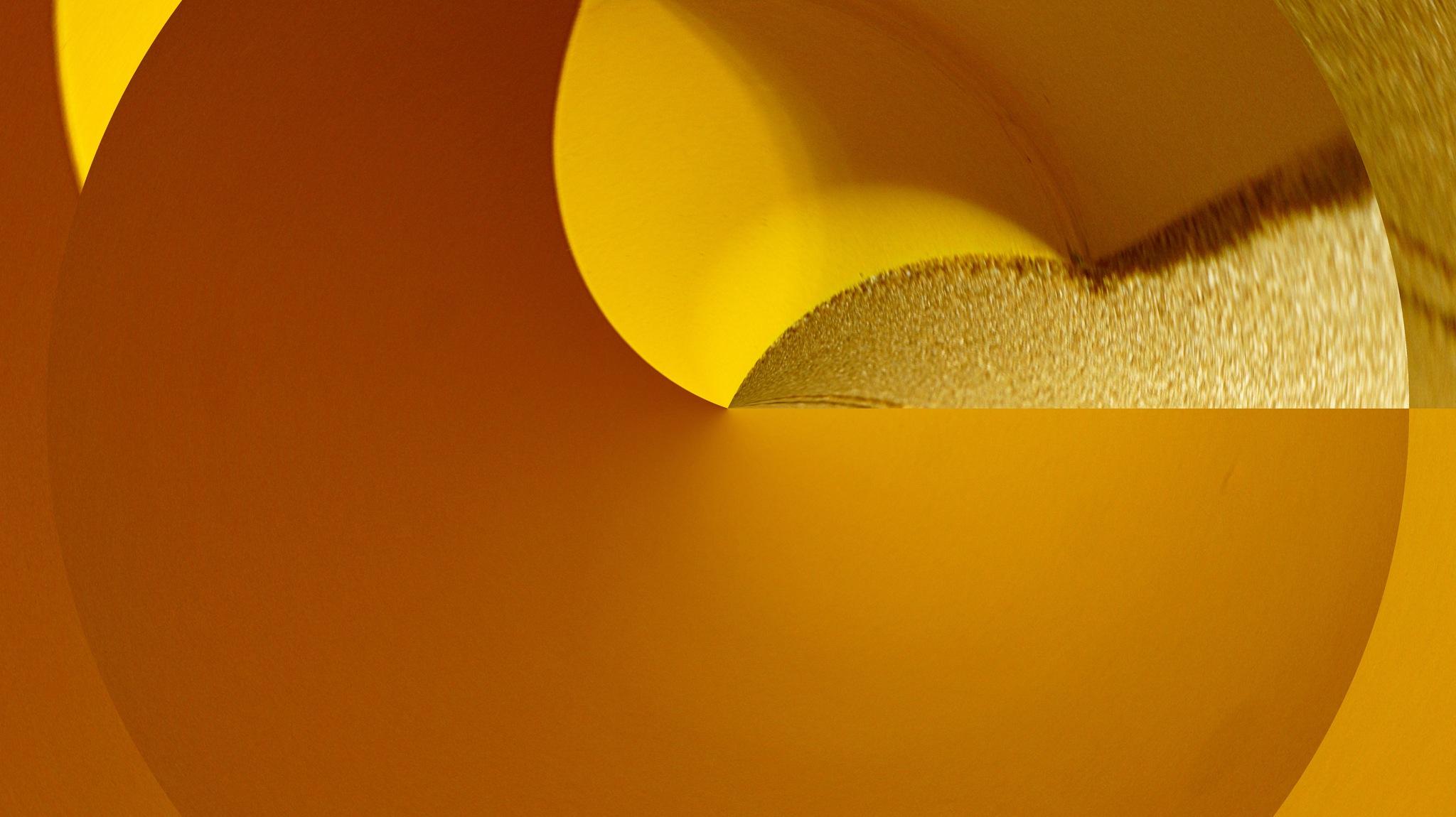 in yellow by José Evaldo Suassuna de Oliveira