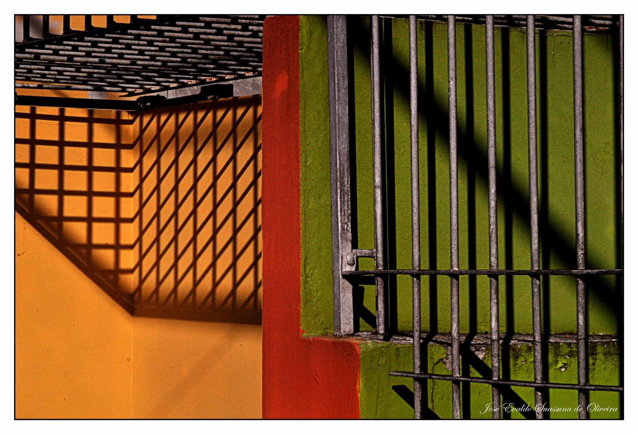 Cor e Sombra by José Evaldo Suassuna de Oliveira