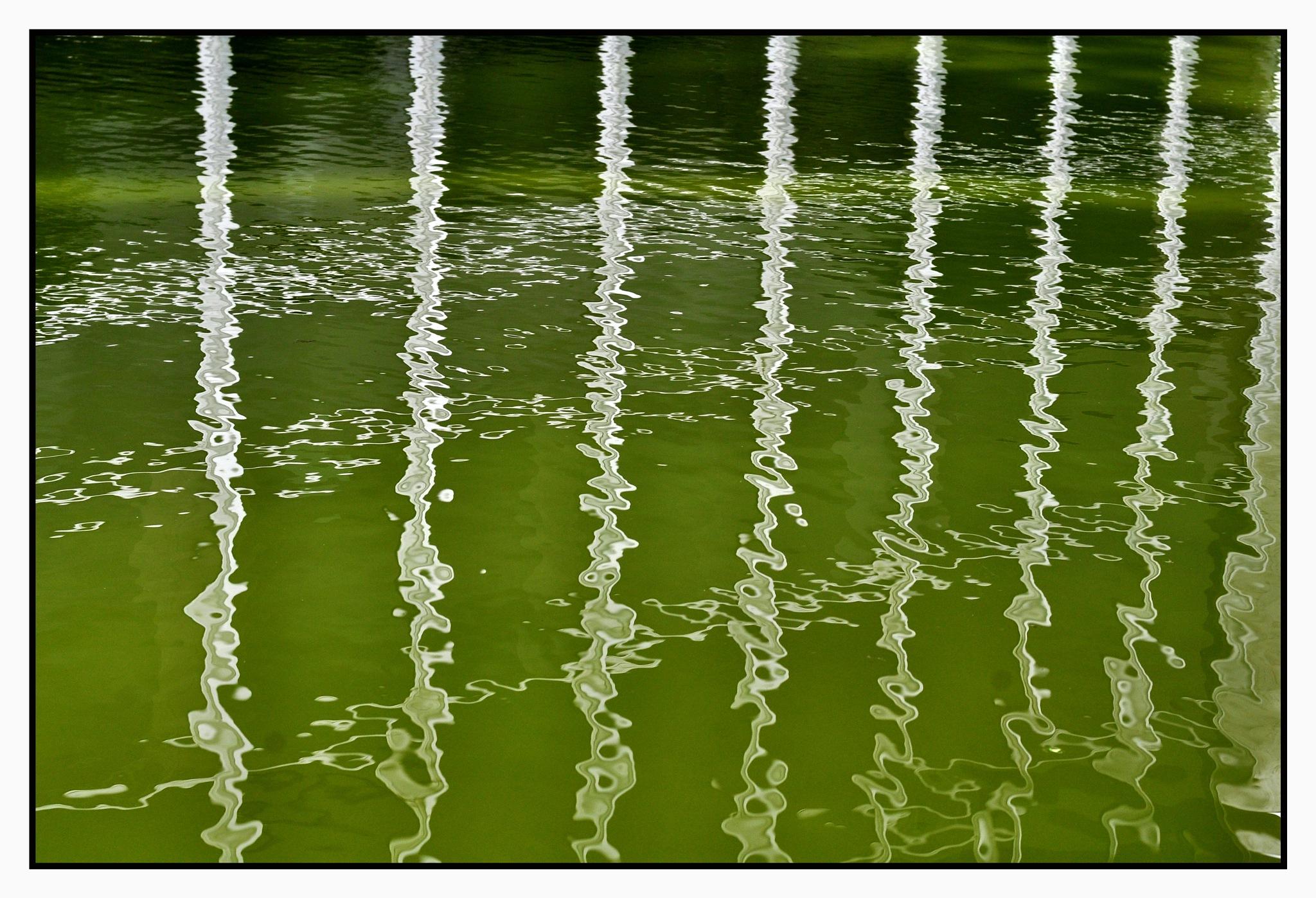 aqua by José Evaldo Suassuna de Oliveira