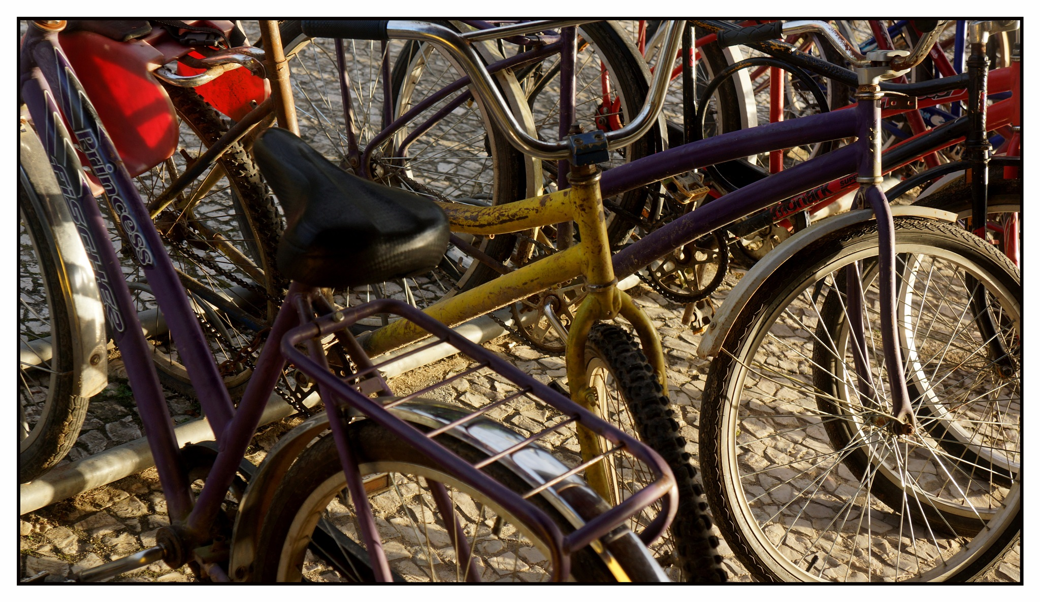 Bikes by José Evaldo Suassuna de Oliveira