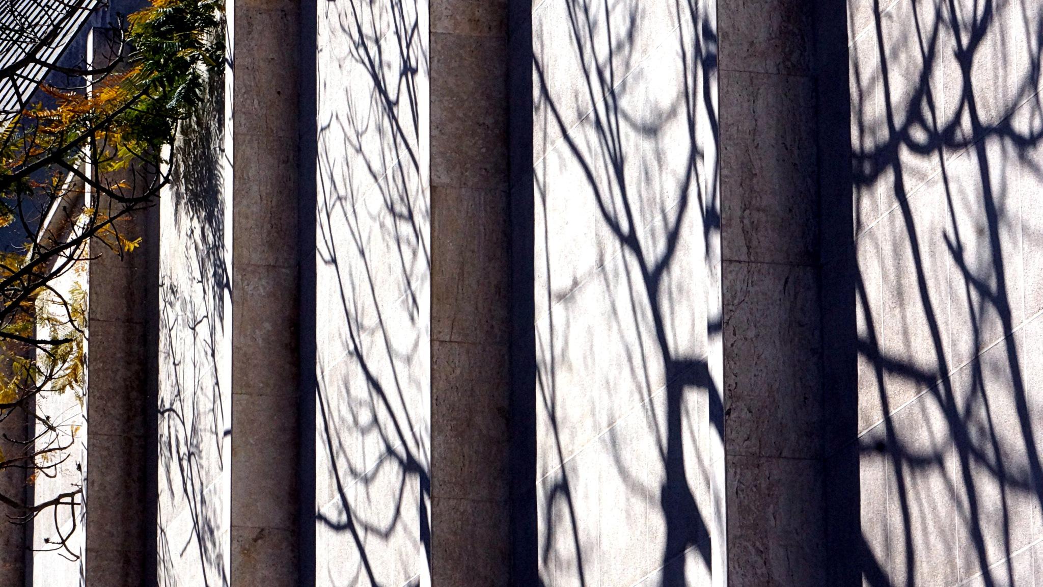 Pilares by José Evaldo Suassuna de Oliveira