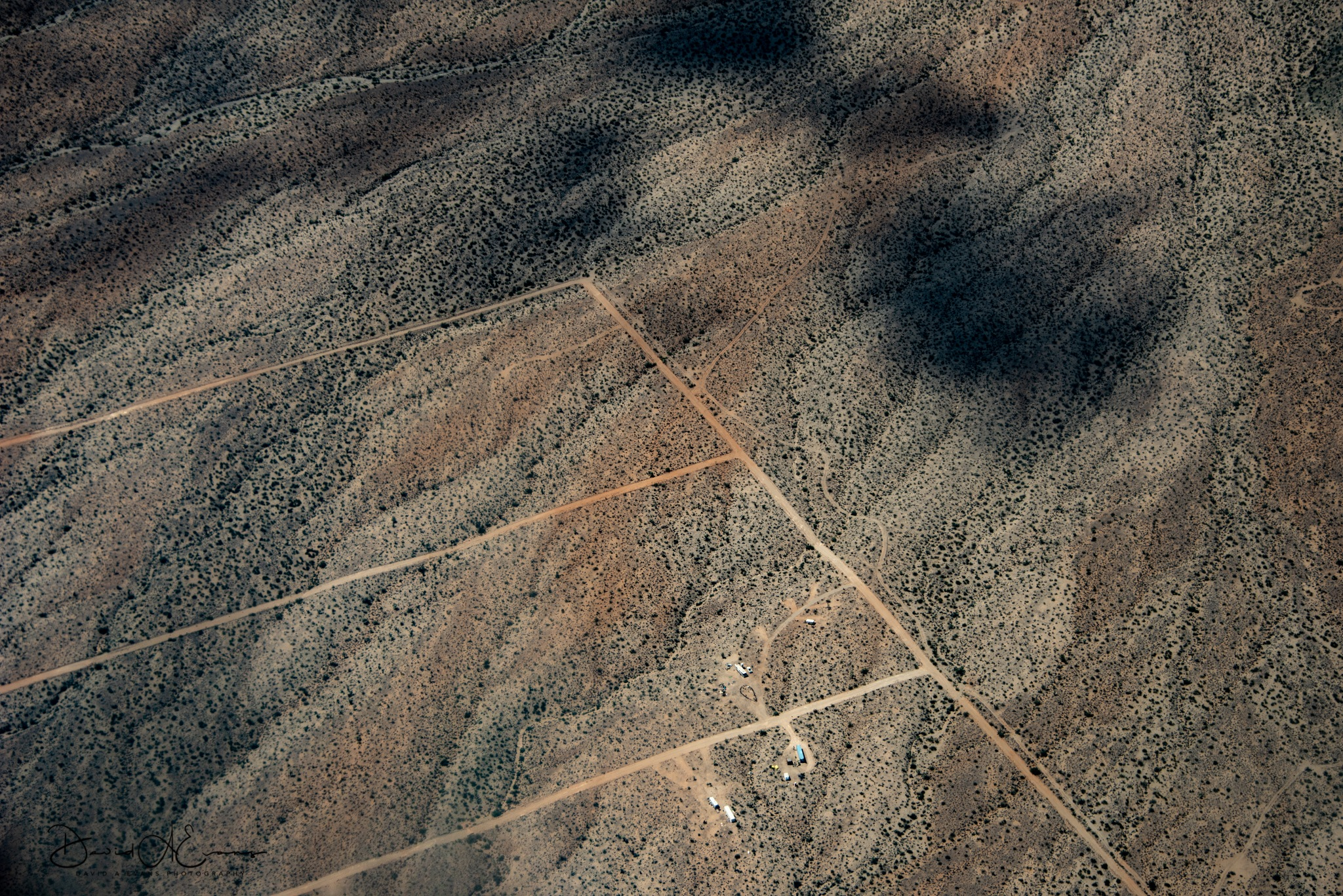 Lines in the Desert  by David Evans