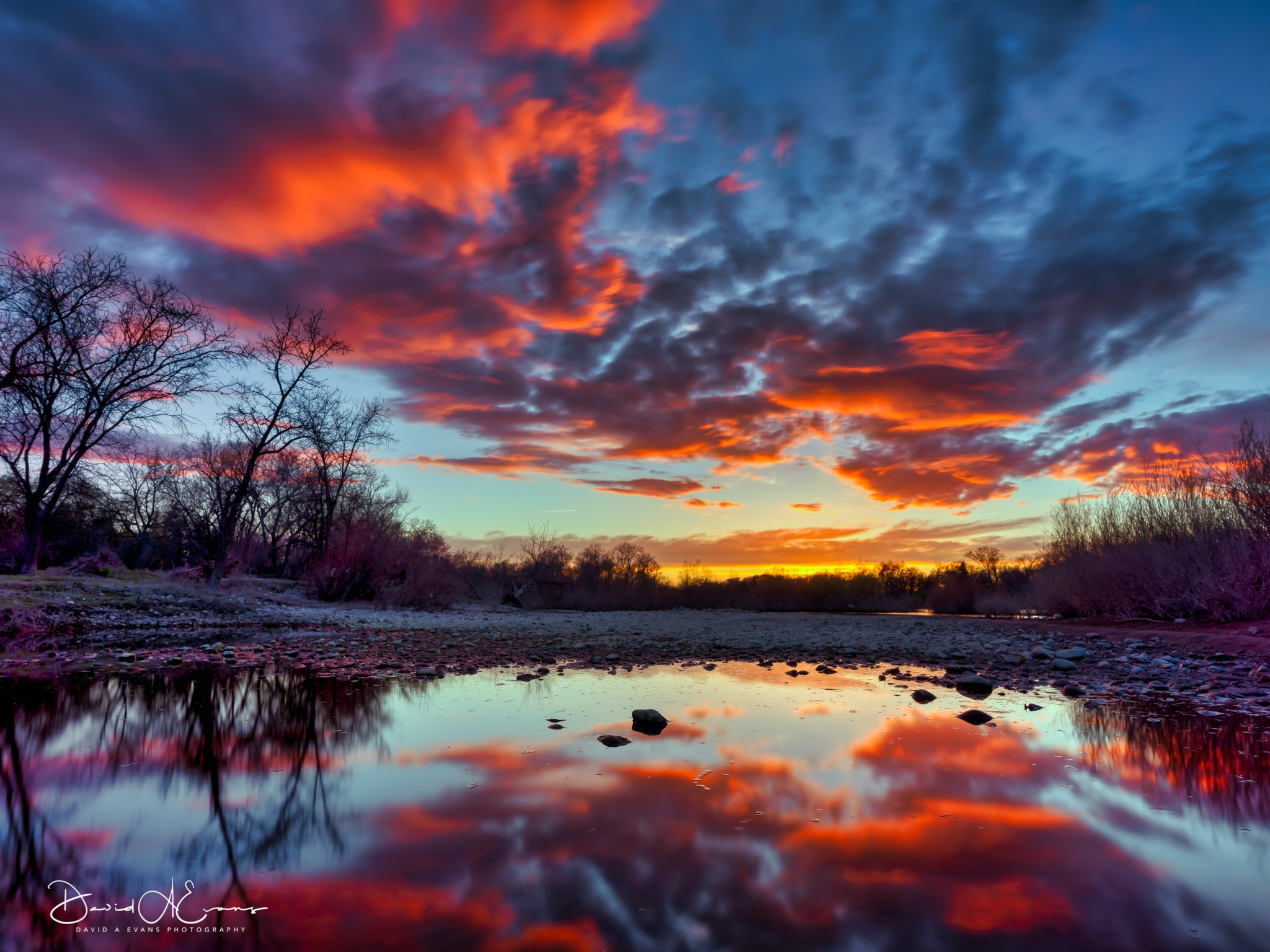 Tonight on The American  American River Parkway at Watt Avenue by David Evans