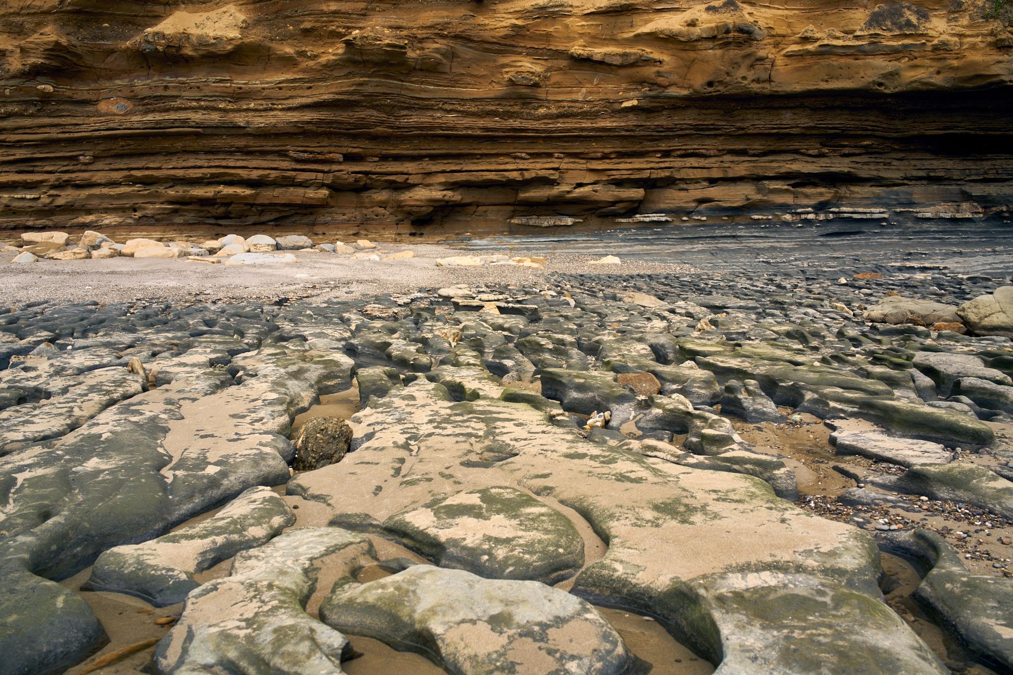 coastline -pacific by stefan enator