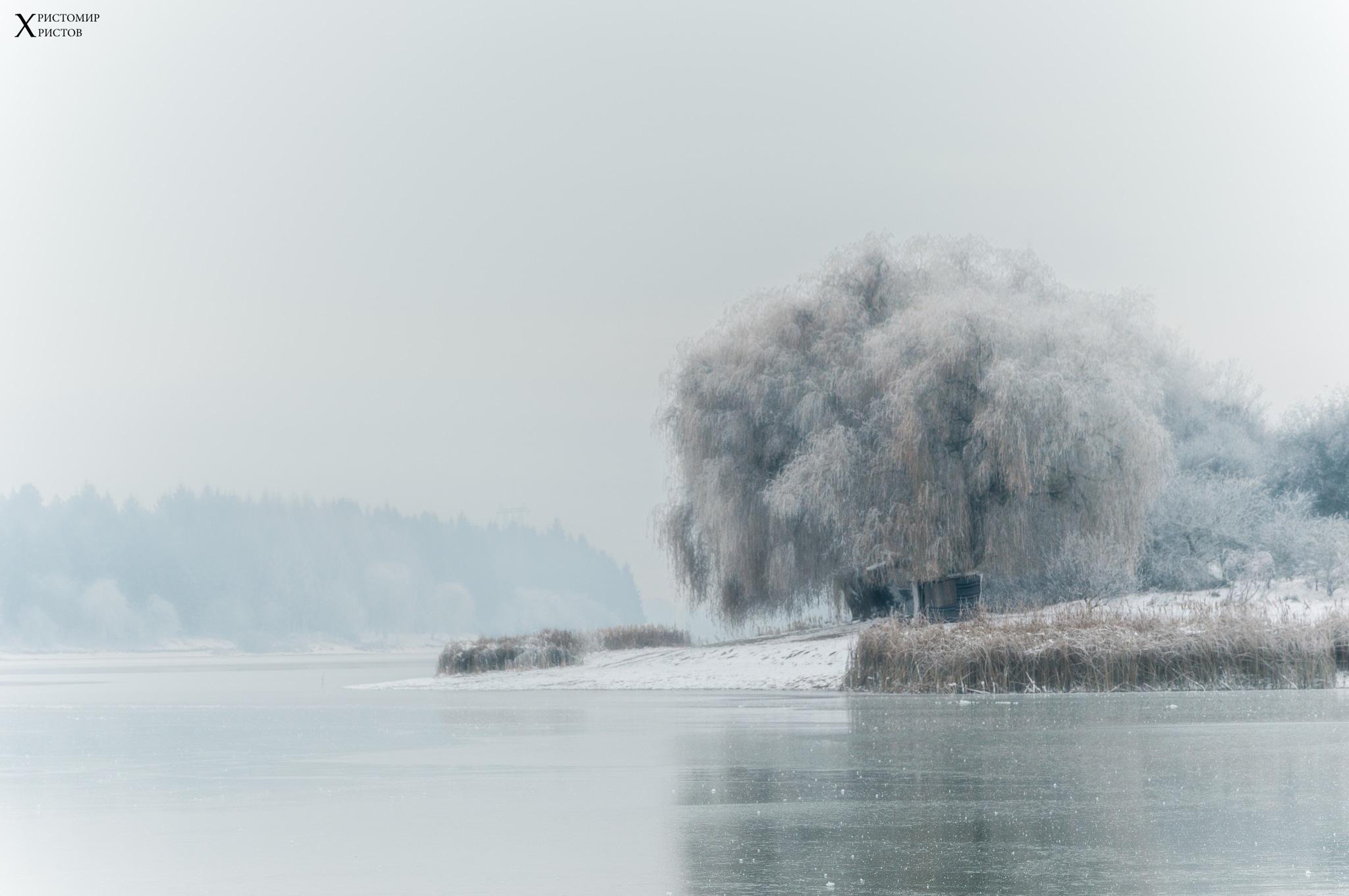 White Season by Hristomir Hristov