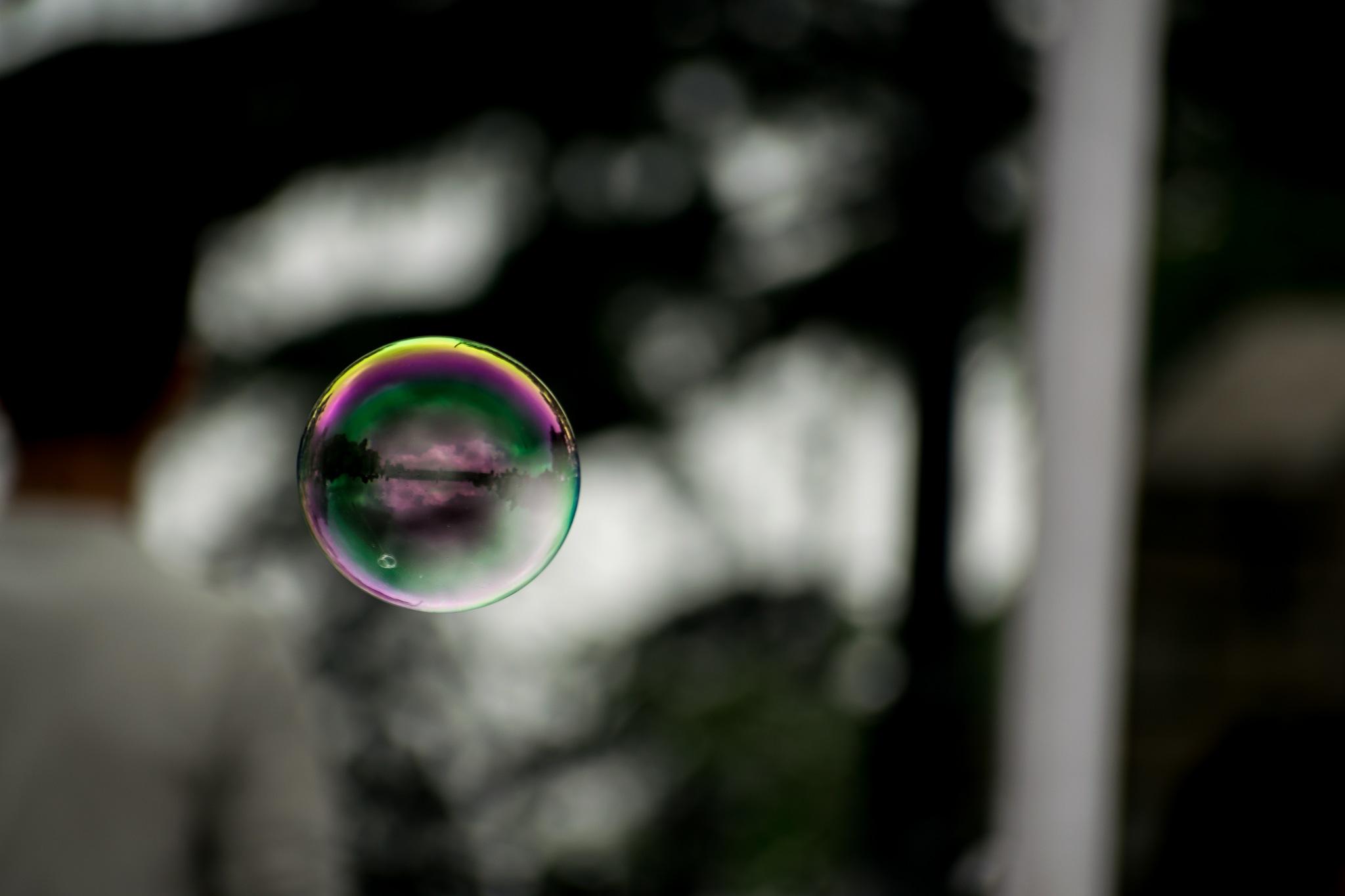 Through a bubble  by Vidushi Gupta