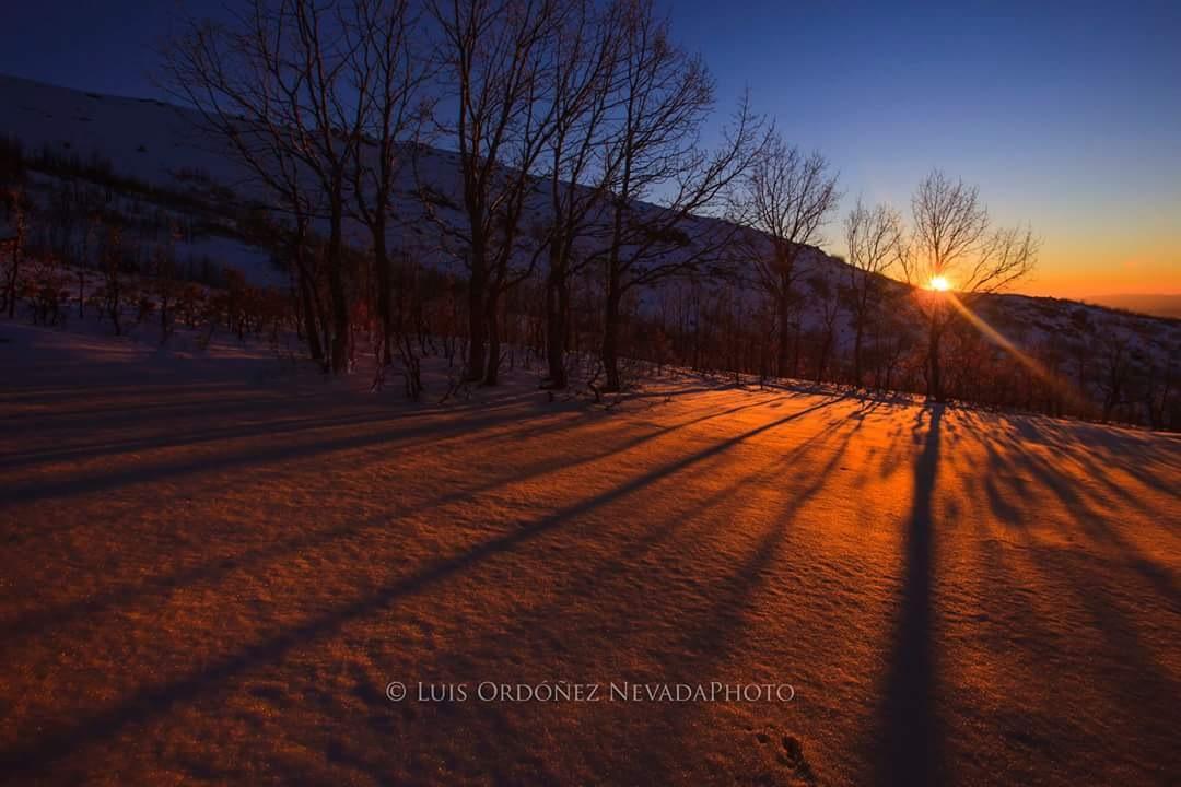 Winter lights by Luis Ordóñez