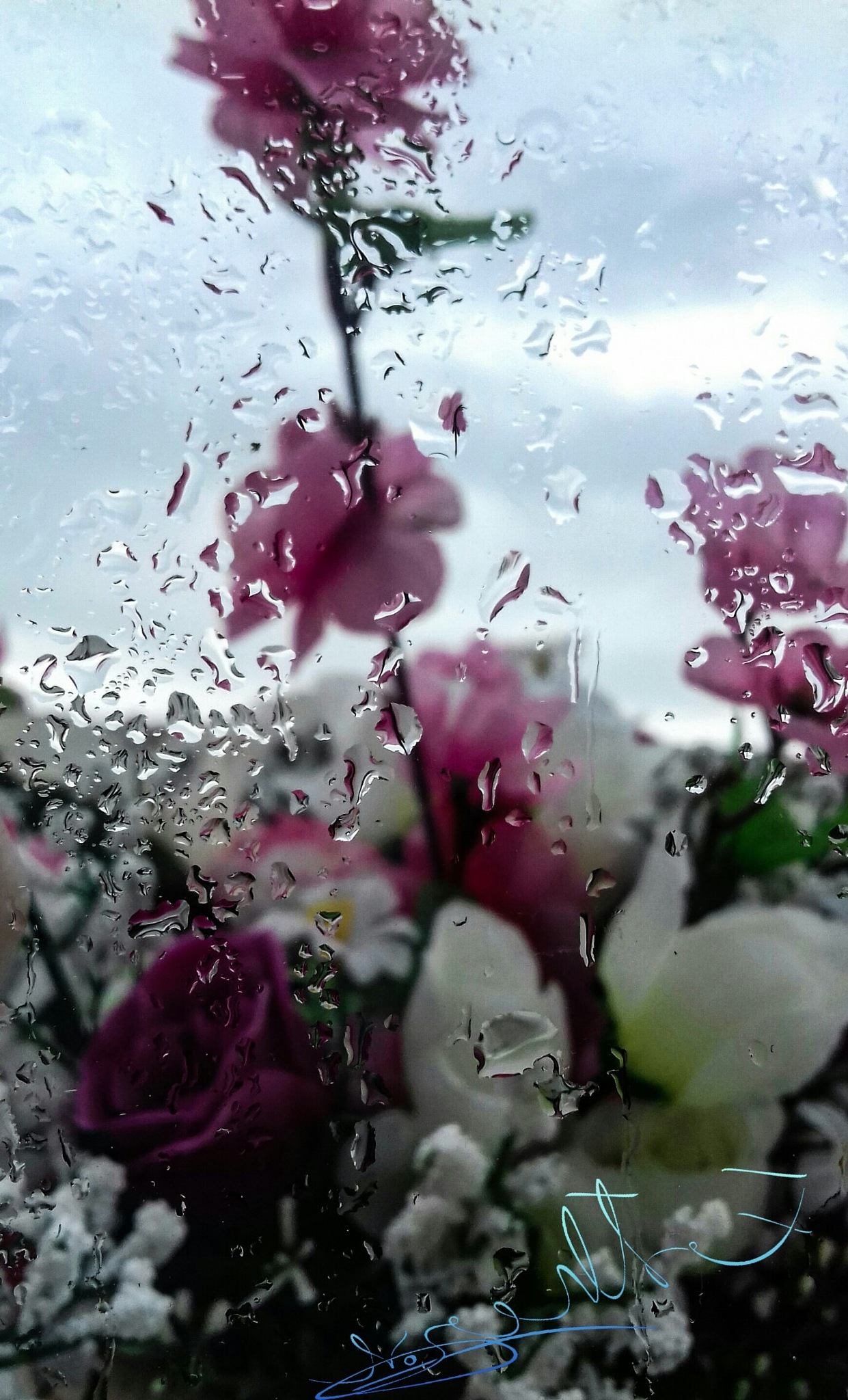 Rain on my Window by Esther Vos
