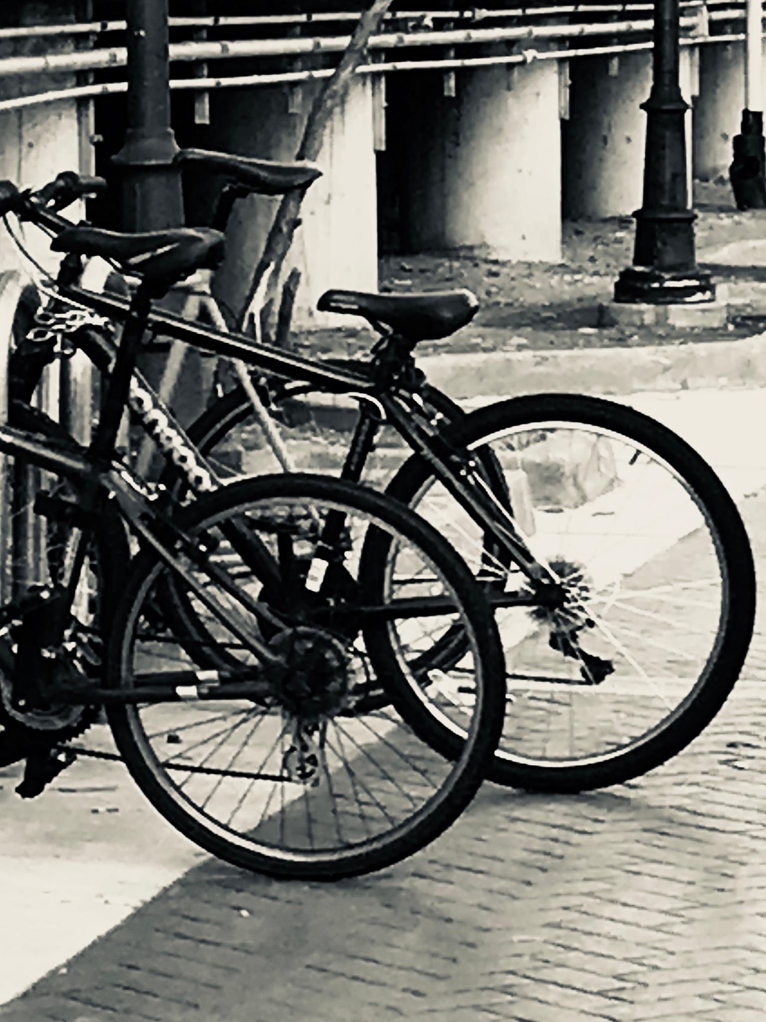 Bikes  by Laurent Villard