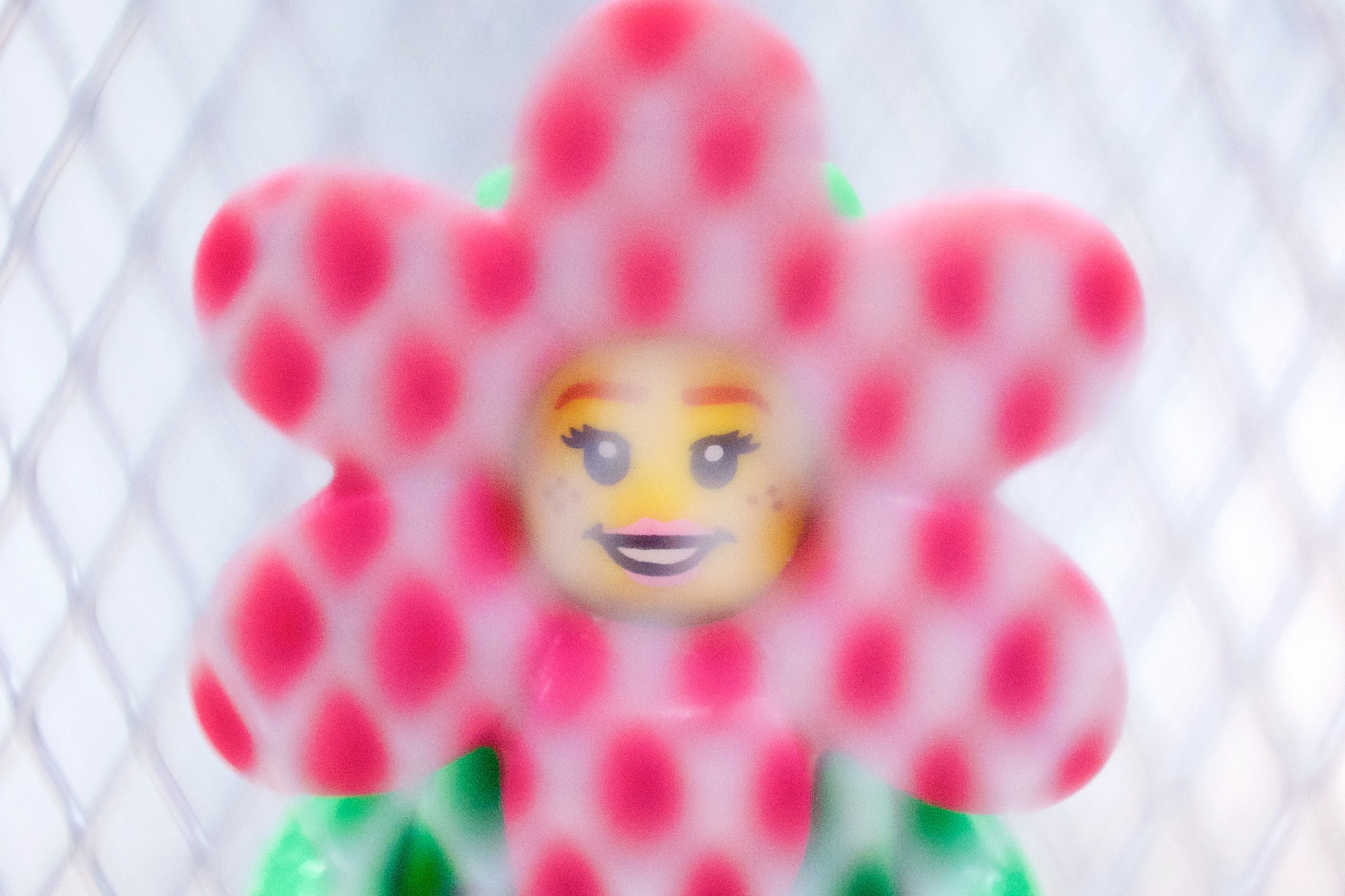 Photo in Macro #minifig #flower #floral #decoration