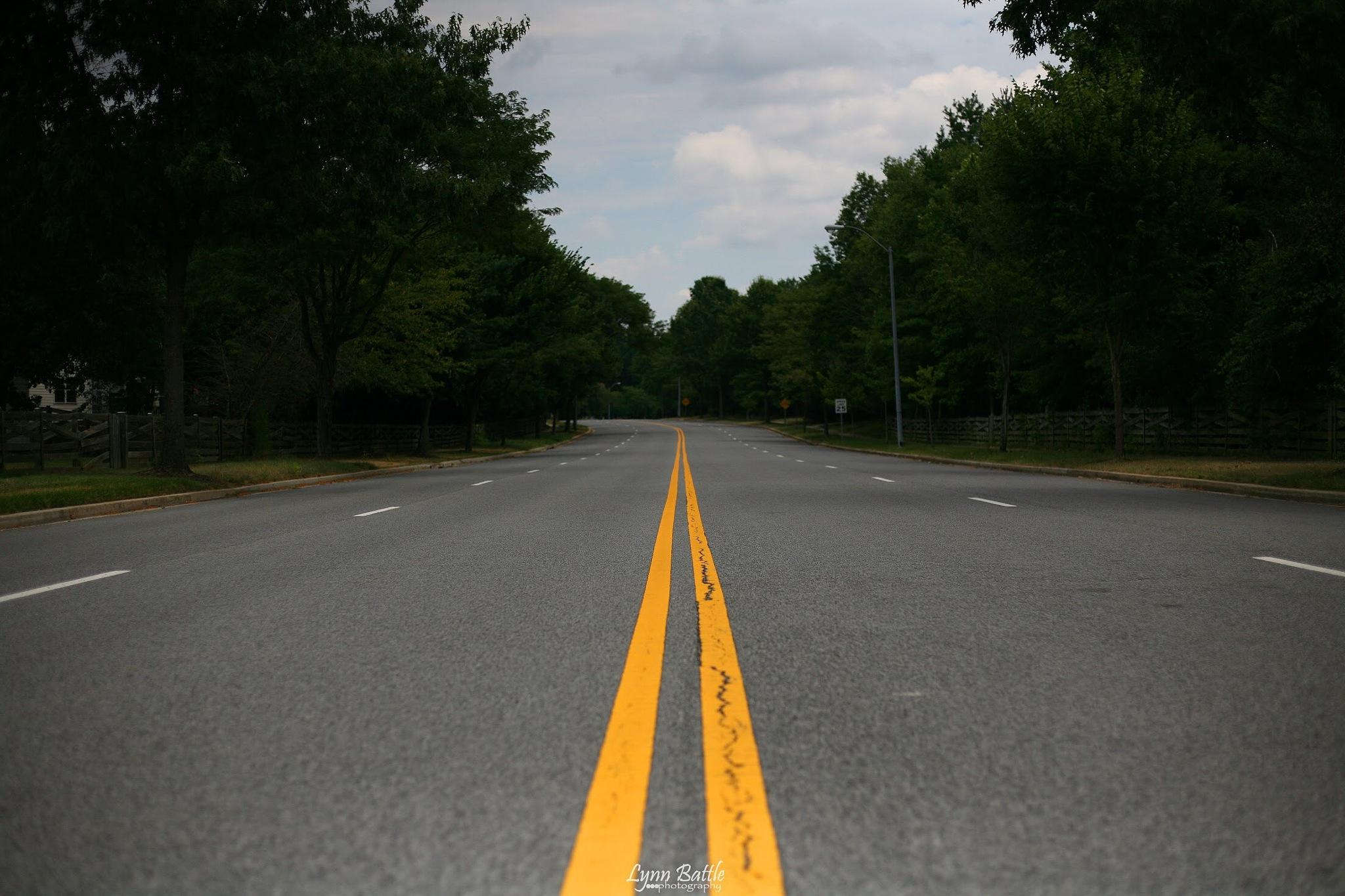On the road again by Lynn B.