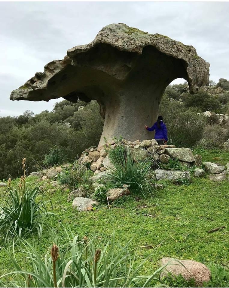 la roccia a forma fungo di Orotelli (Sardegna) by Antonio Manca Pittau